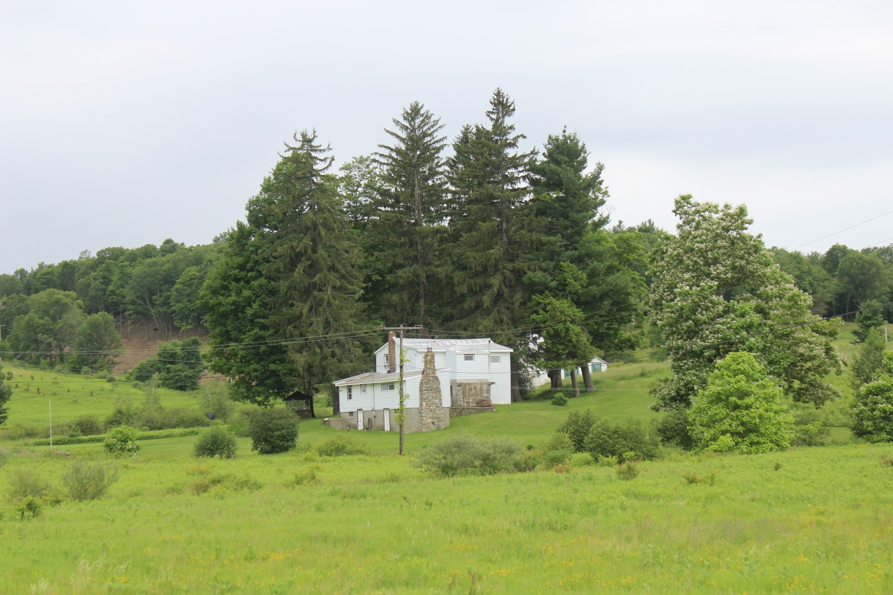 Additional photo for property listing at 229 Kozlowski Road, Gallatin, NY 12523 229  Kozlowski Road Gallatin, Nueva York 12523 Estados Unidos