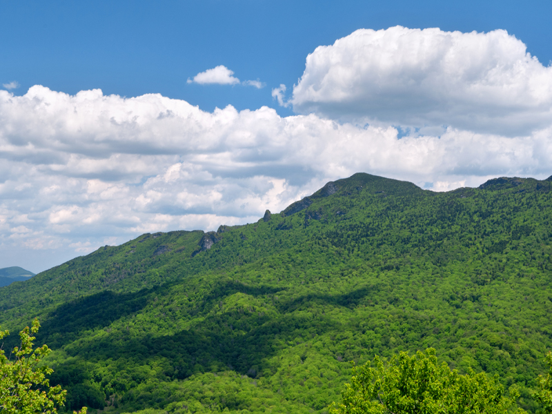 Property Of LINVILLE RIDGE - THE SUMMIT
