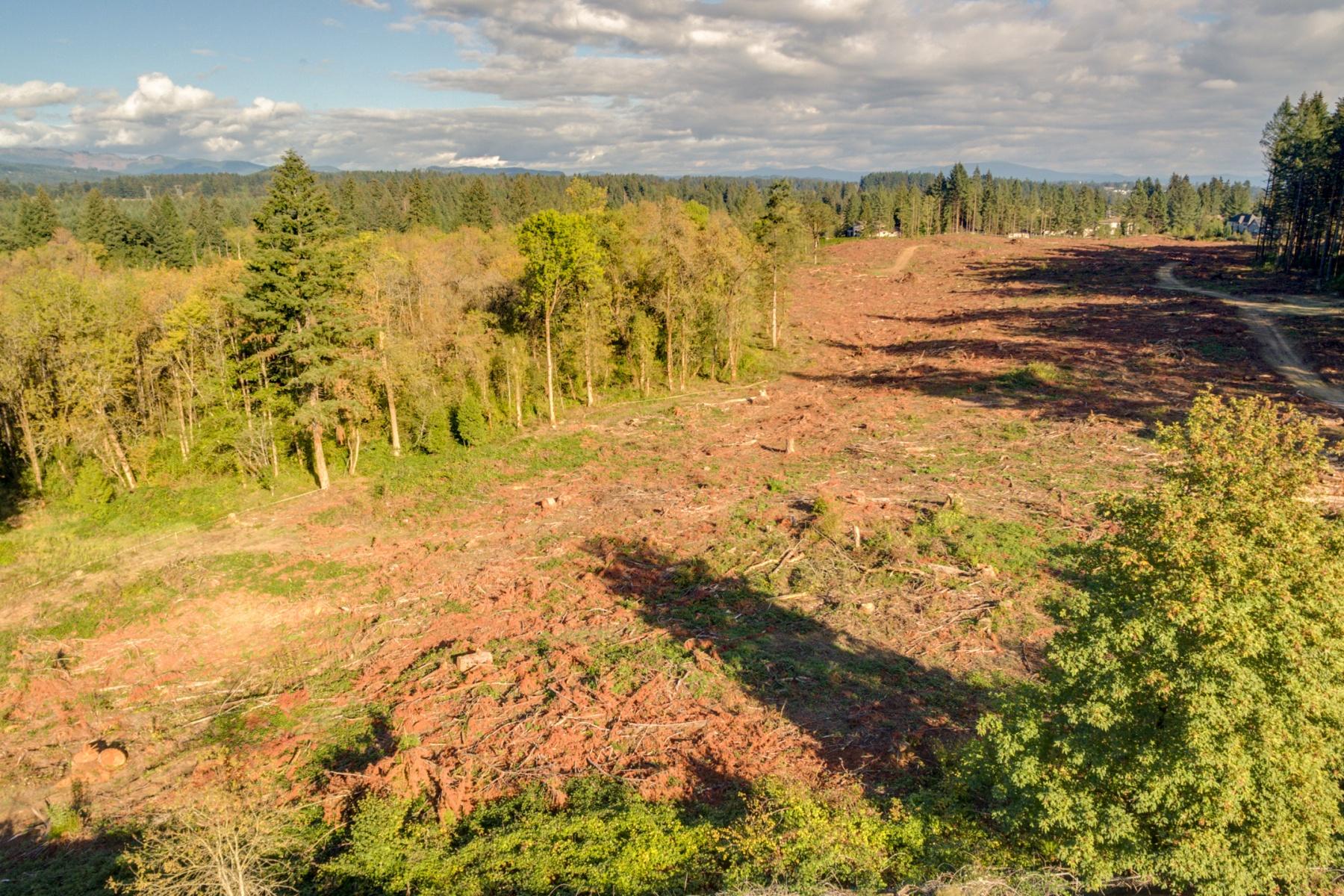 Land for Sale at 6726 NW Longbow 42, CAMAS 6726 NW Longbow Ln 42 Camas, Washington 98607 United States