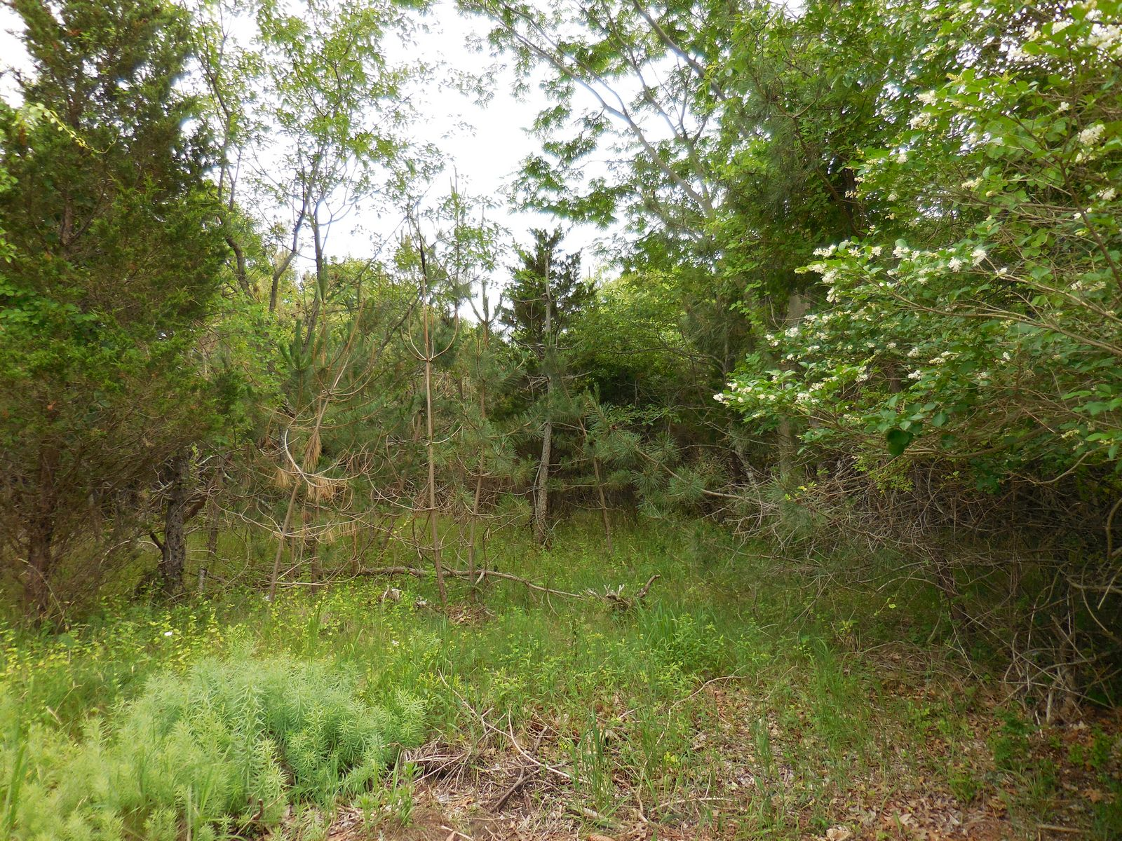 Land for Sale at Land 840 Southern Blvd East Marion, New York 11939 United States