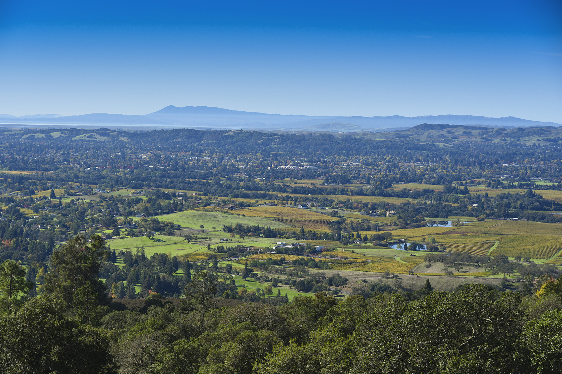 Land for Sale at 0 Atlas Peak Rd, Napa, CA 94558 0 Atlas Peak Rd Napa, California, 94558 United States