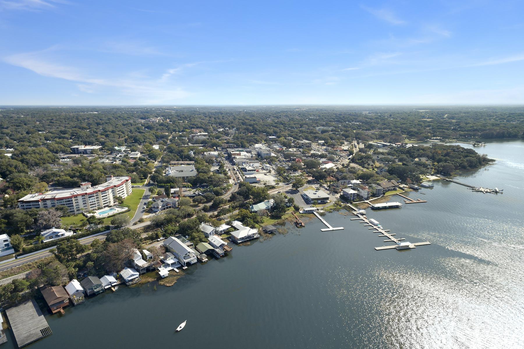 独户住宅 为 销售 在 ORLANDO - MOUNT DORA 404 Lake Dora Rd 蒙特多拉, 佛罗里达州, 32757 美国