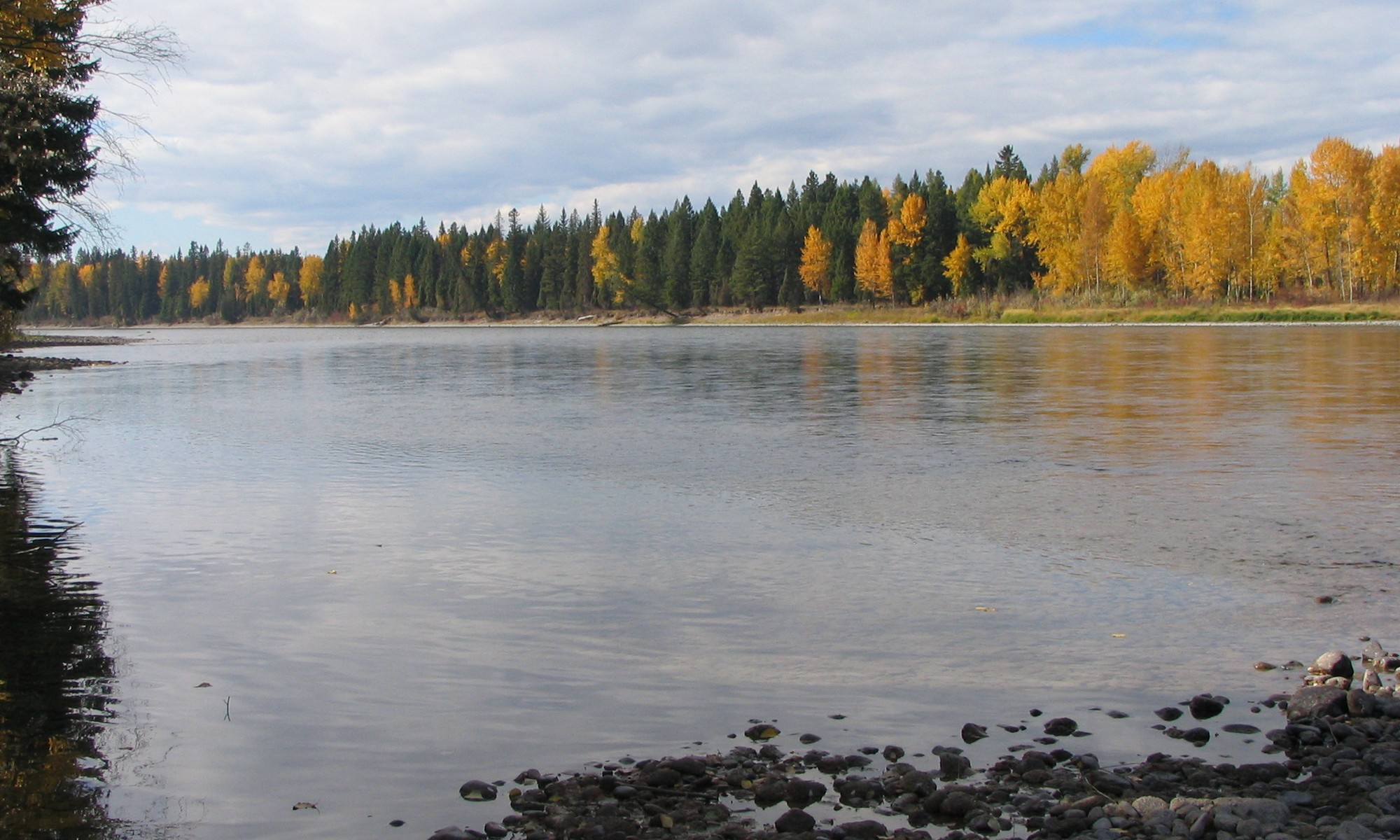 sales property at Flathead River Frontage
