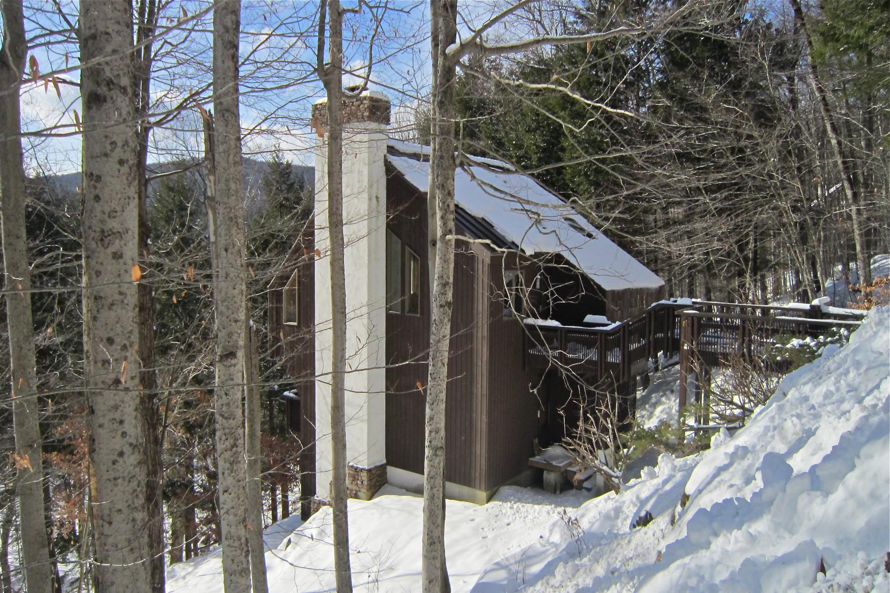Casa Unifamiliar por un Venta en Unique Hawk HOme 495 Kestrell Dr Plymouth, Vermont, 05056 Estados Unidos