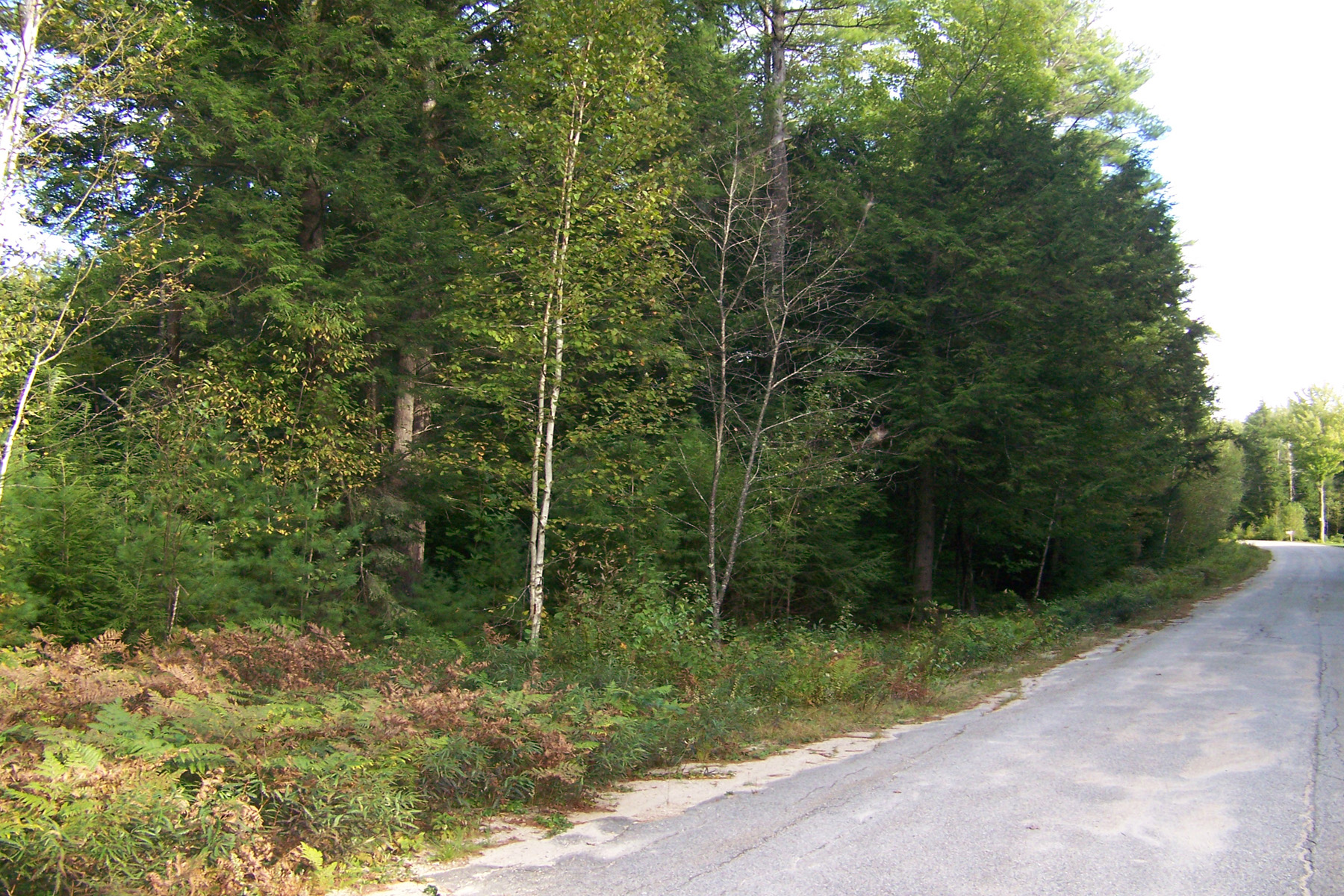 Terrain pour l Vente à Woodland Acres Lot 5K Roberts Rd Brookfield, New Hampshire, 03872 États-Unis