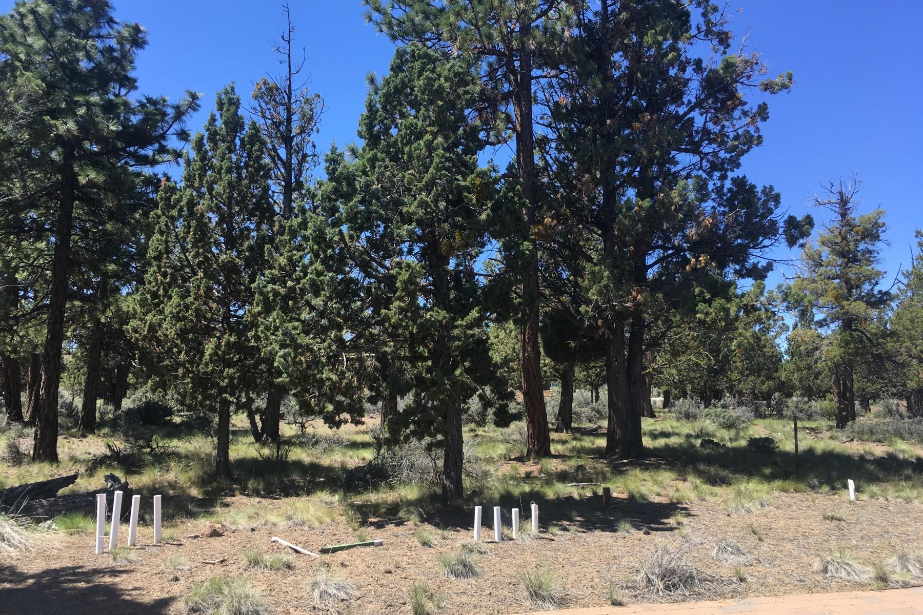 土地 のために 売買 アット North Rim Flat, Buildable Lot 1481 NW Puccoon Ct Bend, オレゴン, 97701 アメリカ合衆国