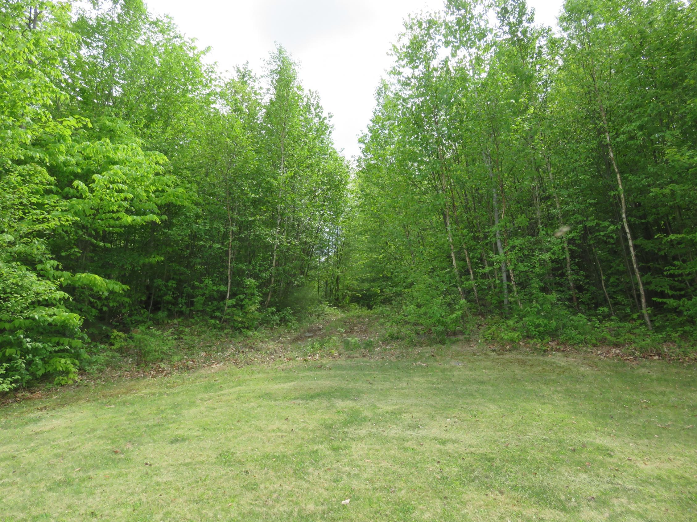 Terreno por un Venta en 703 Miller Pond Road, Grantham 703 Miller Pond Rd Grantham, Nueva Hampshire, 03753 Estados Unidos