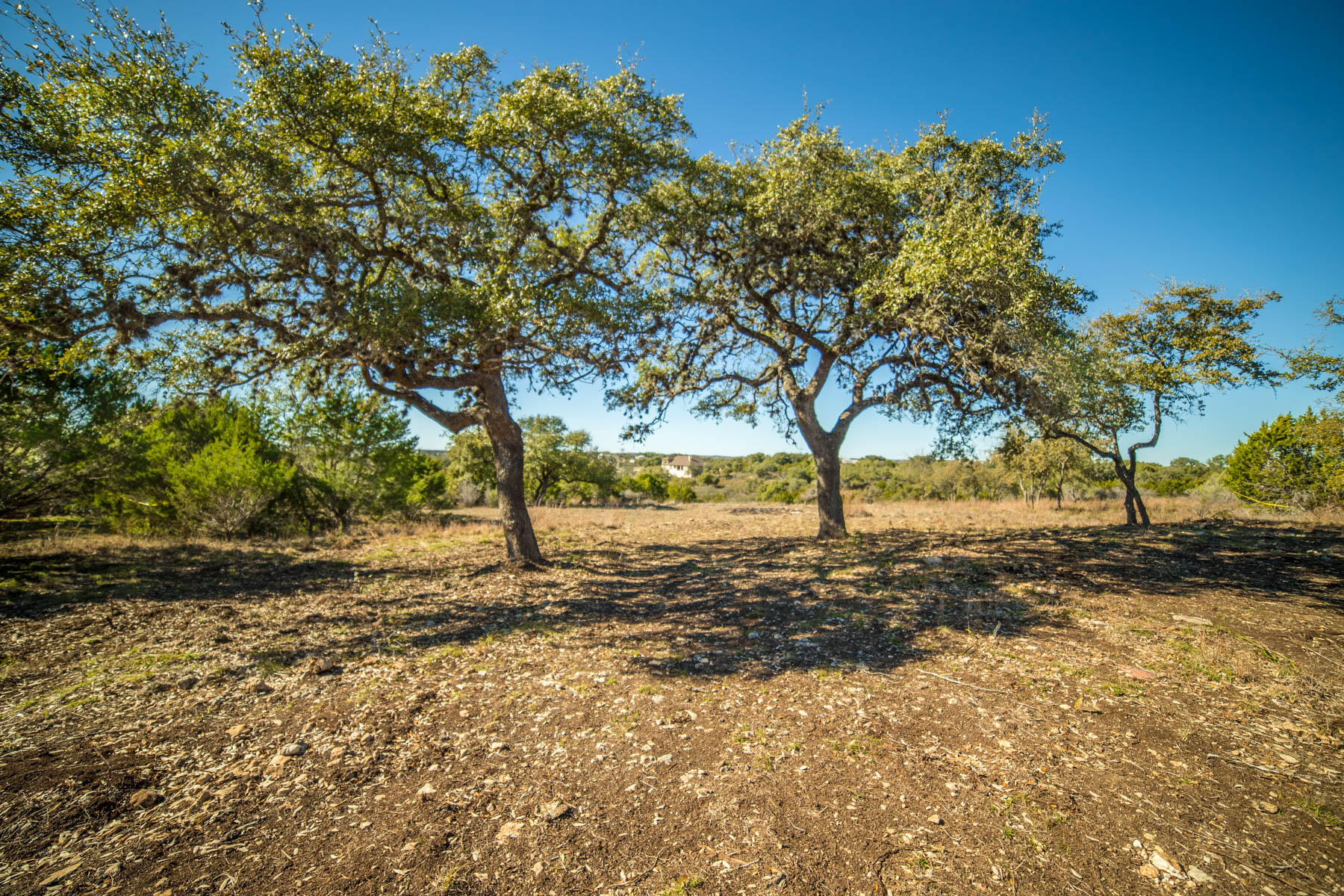 Land for Sale at Beautiful Lot at Mystic Shores 234 Muse Dr Spring Branch, Texas 78070 United States