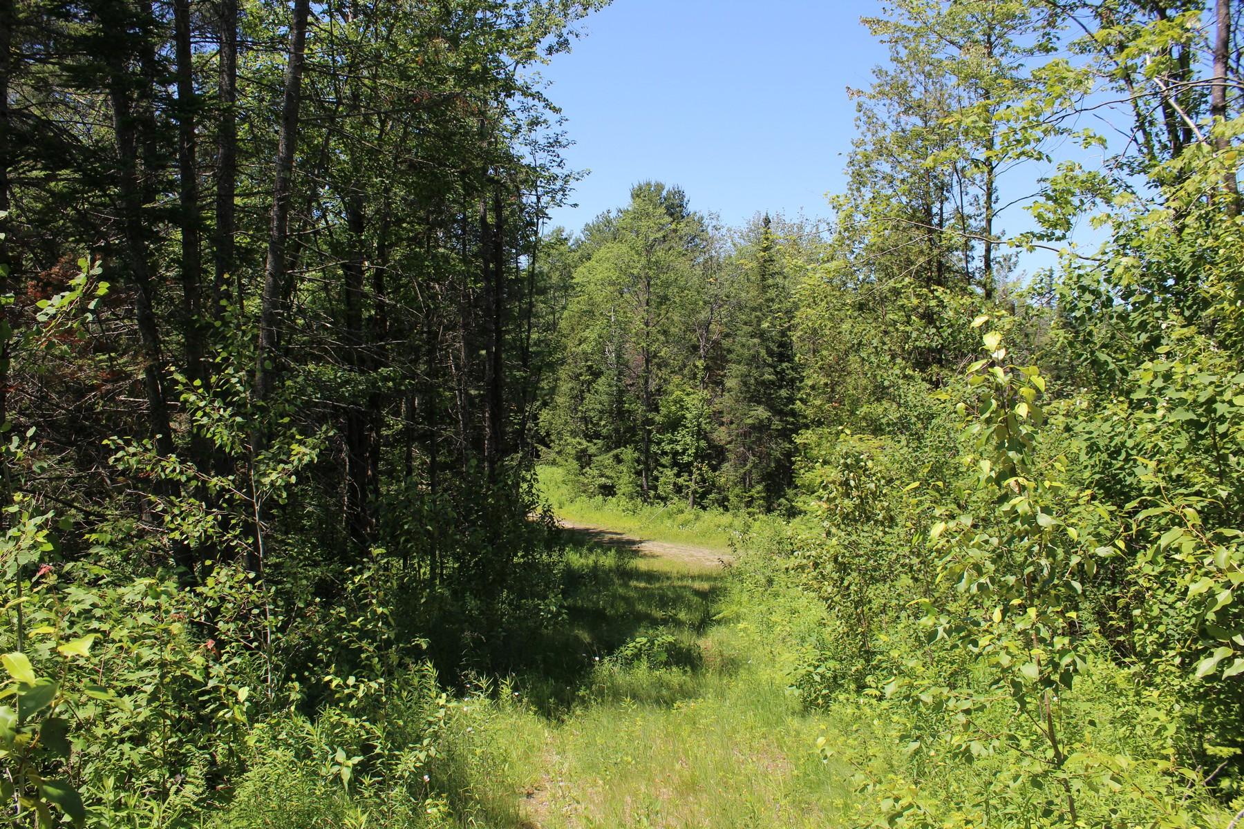 Terreno por un Venta en Rt # 58, Barton Barton, Vermont, 05860 Estados Unidos