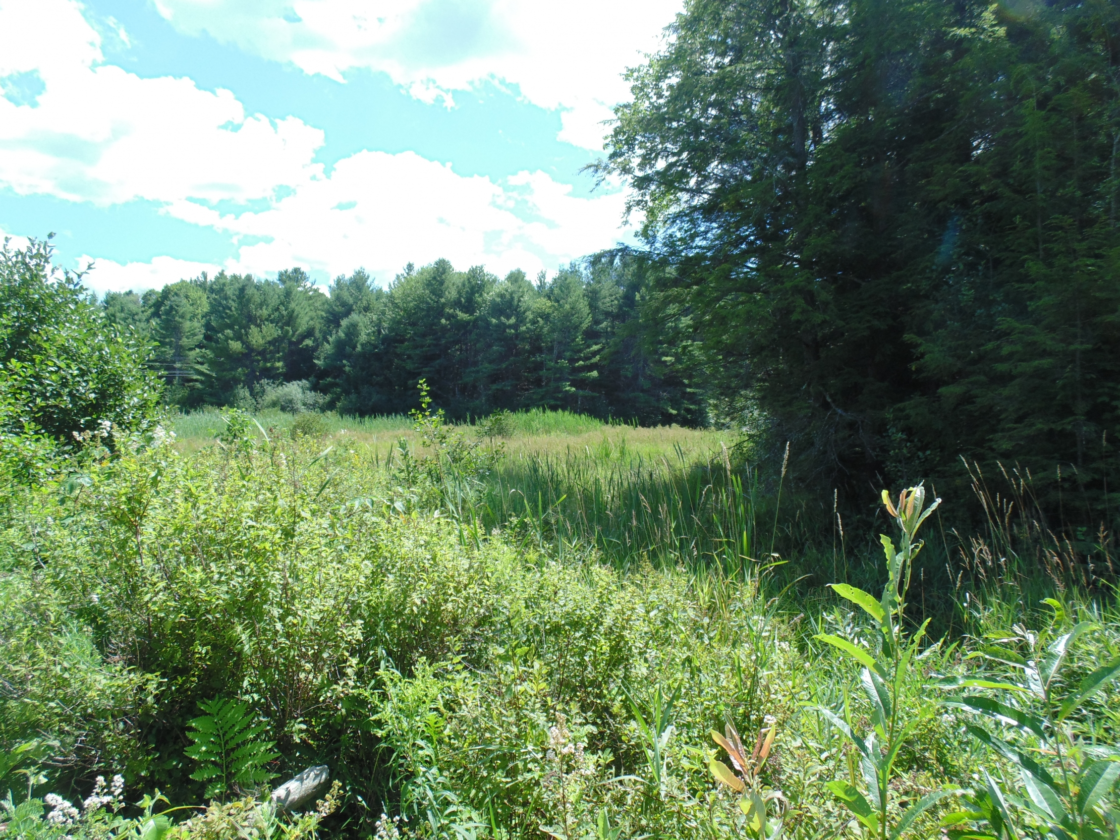 Land for Sale at Route 120, Plainfield Plainfield, New Hampshire 03781 United States