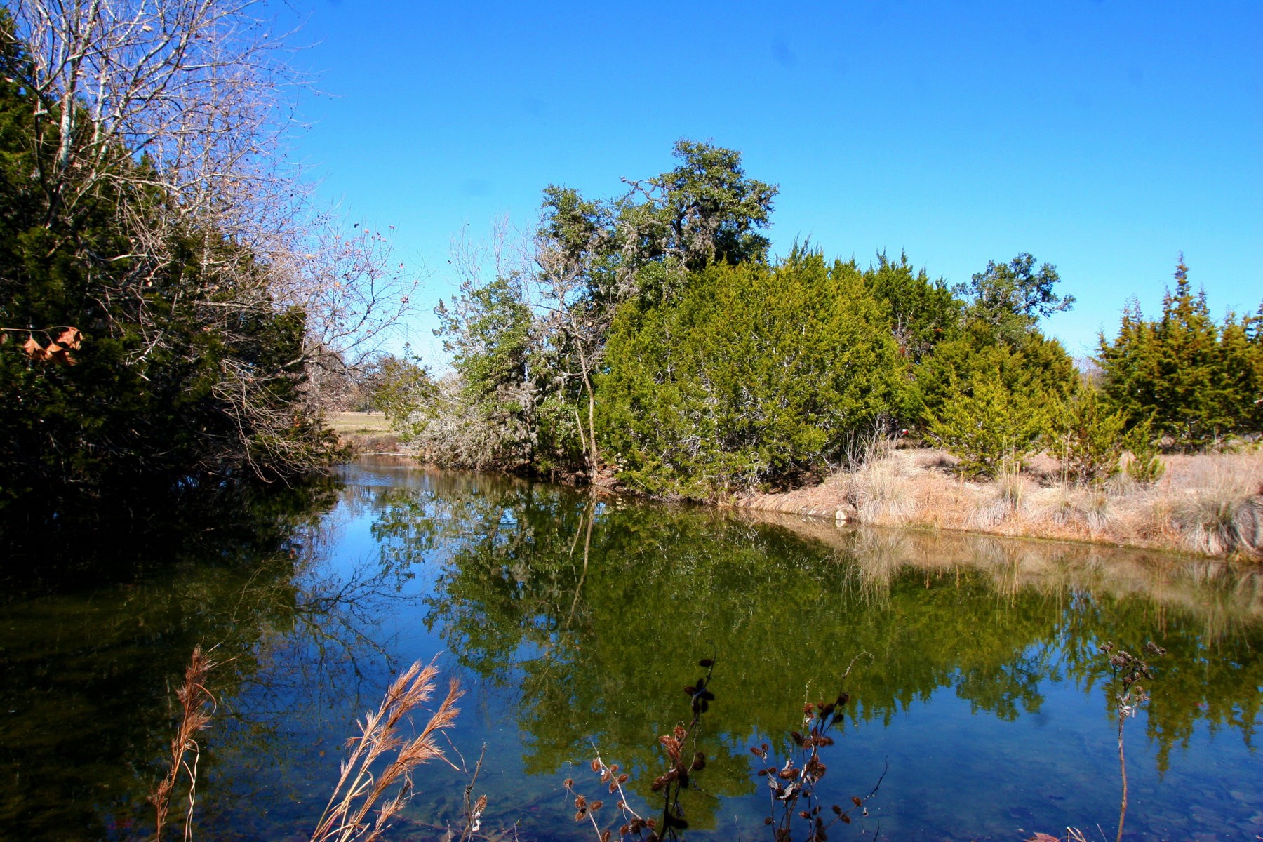 Farm / Ranch / Plantation for Sale at 145.52+/- Acres - Old Real Ranch on West Creek 180 Sarah's Barn Rd Kerrville, Texas 78028 United States