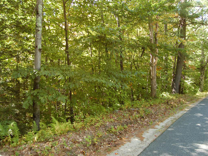 Land for Sale at Very Desirable Locat Old Post Rd Newbury, New Hampshire 03255 United States