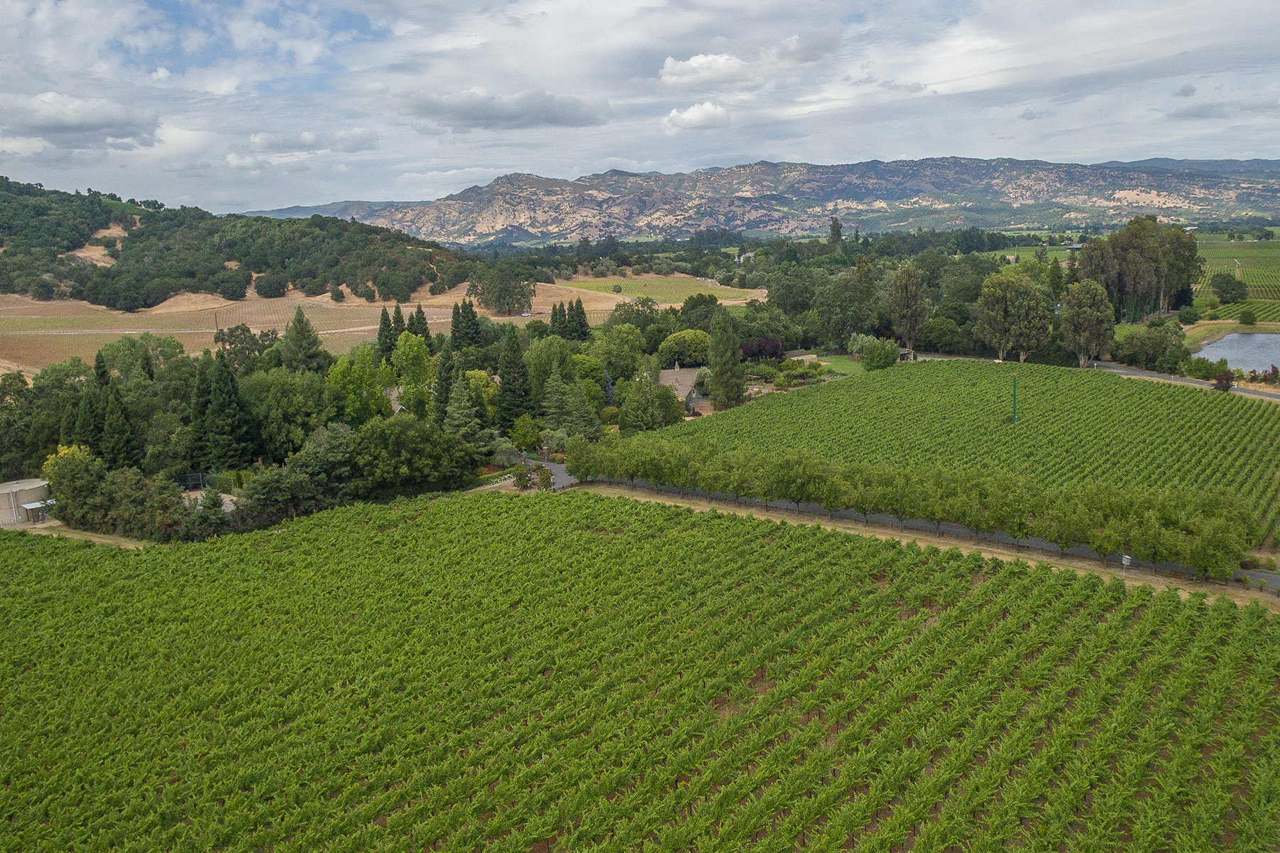 sales property at 4120 Dry Creek Rd, Napa, CA 94558