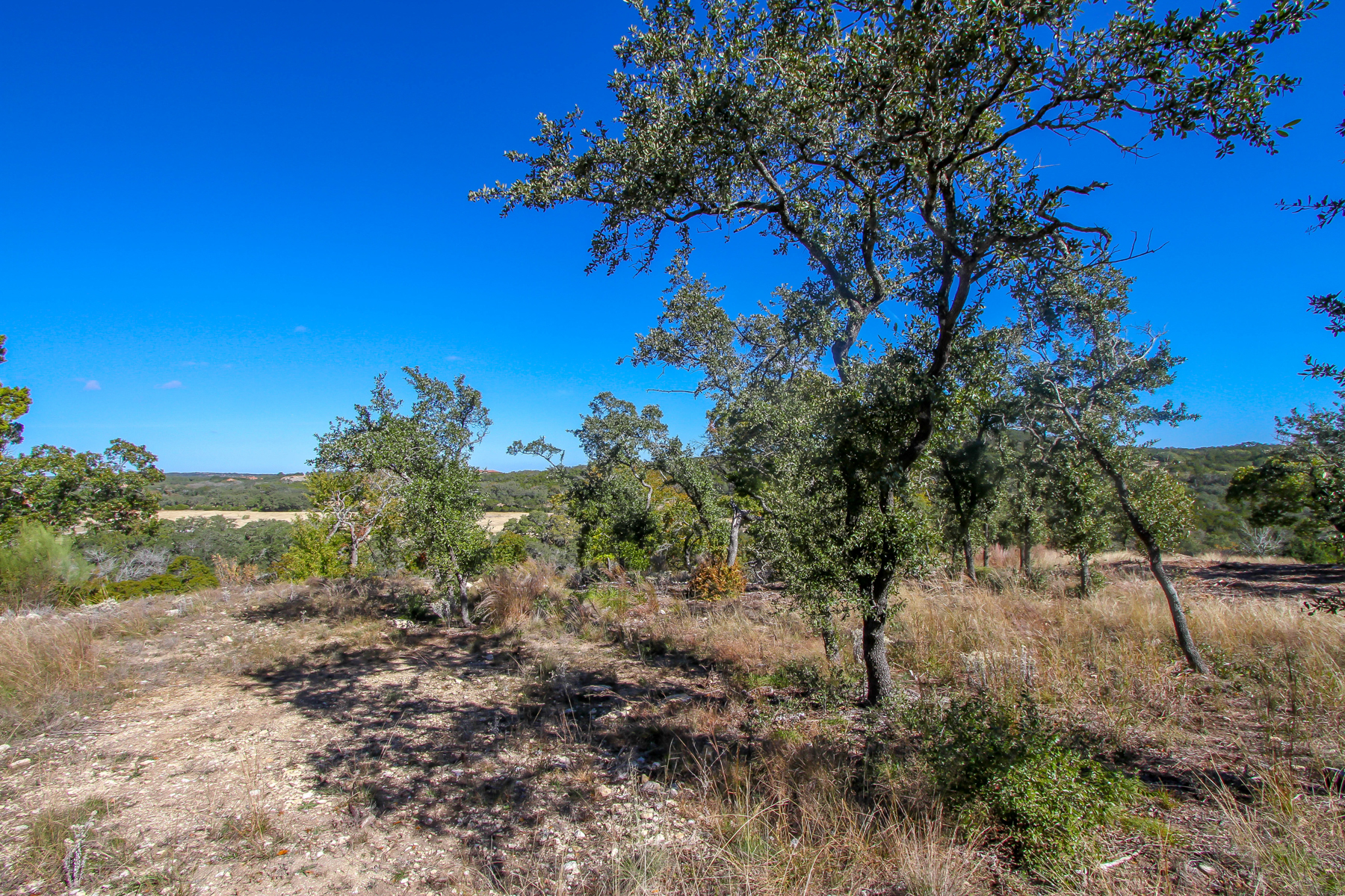 Additional photo for property listing at Gorgeous Lot in Anaqua Springs 24923 Caliza Terr Boerne, Texas 78006 Estados Unidos