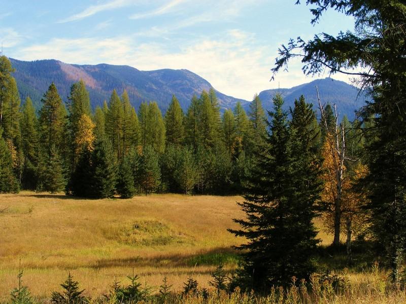 Land for Sale at Jewel Basin 4520 Foothill Rd Bigfork, Montana 59911 United States