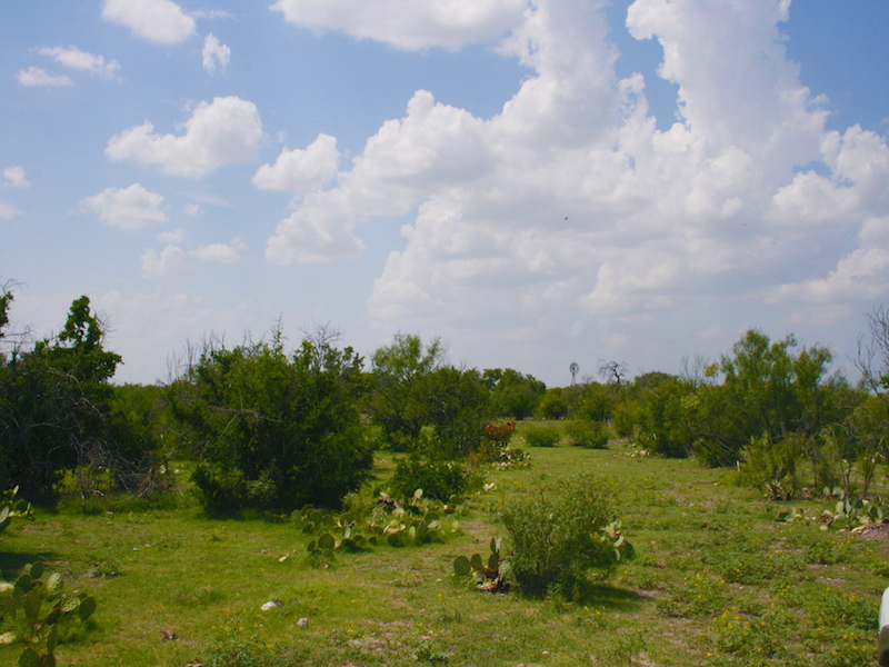 Property For Sale at 1,832+/- Acres CONOLY RANCH