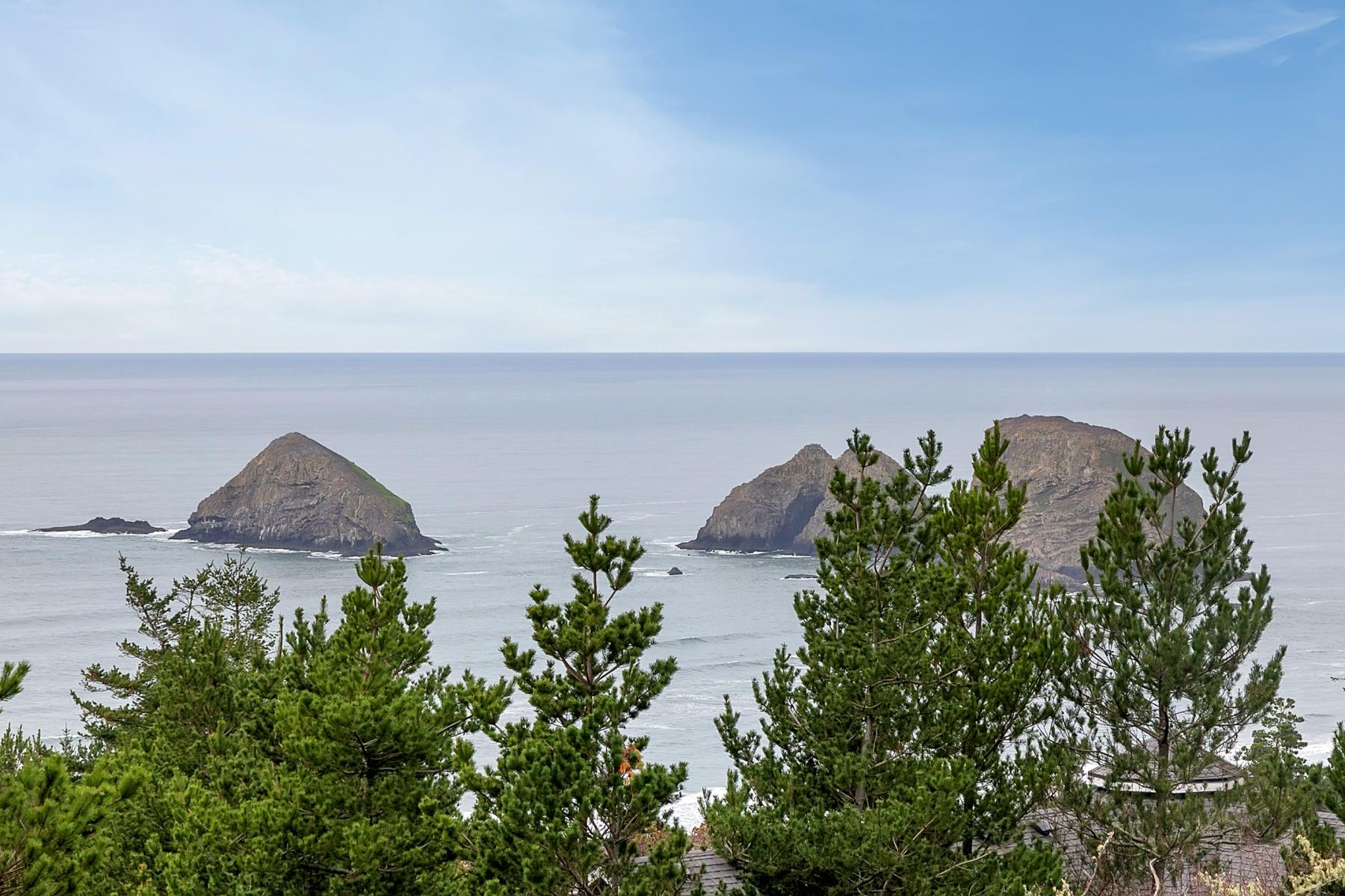 Đất đai vì Bán tại Castle DR 00100, OCEANSIDE Oceanside, Oregon, 97134 Hoa Kỳ