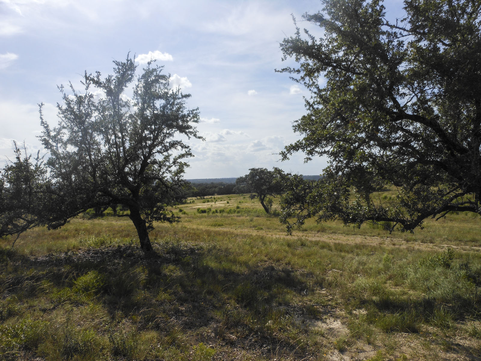 Additional photo for property listing at Beautiful Views of Texas Hill Country 112 Rock Bend Ct Spicewood, Texas 78669 United States