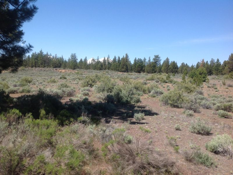 Property For Sale at Highway 20