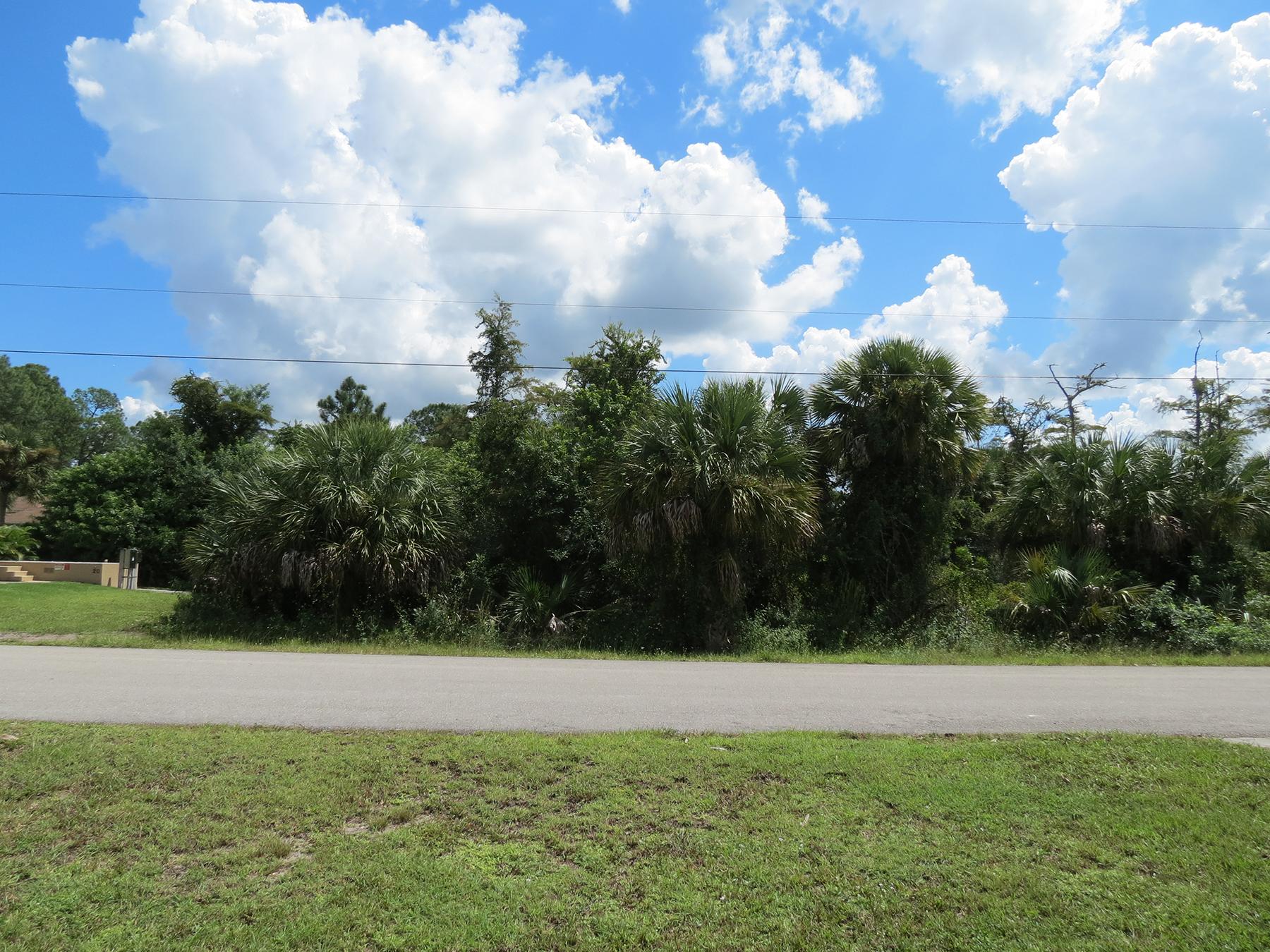 토지 용 매매 에 GOLDEN GATE ESTATES 8th St SE Naples, 플로리다, 34117 미국