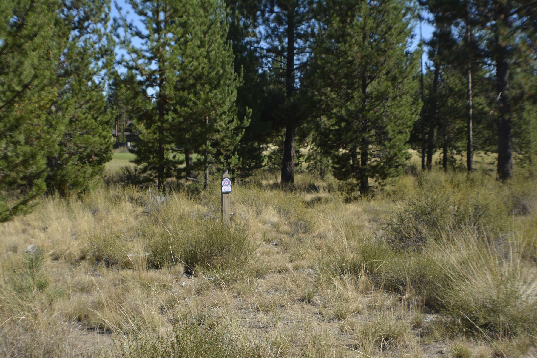 Land for Sale at Caldera Springs Golf Course Lot Other Areas, USA