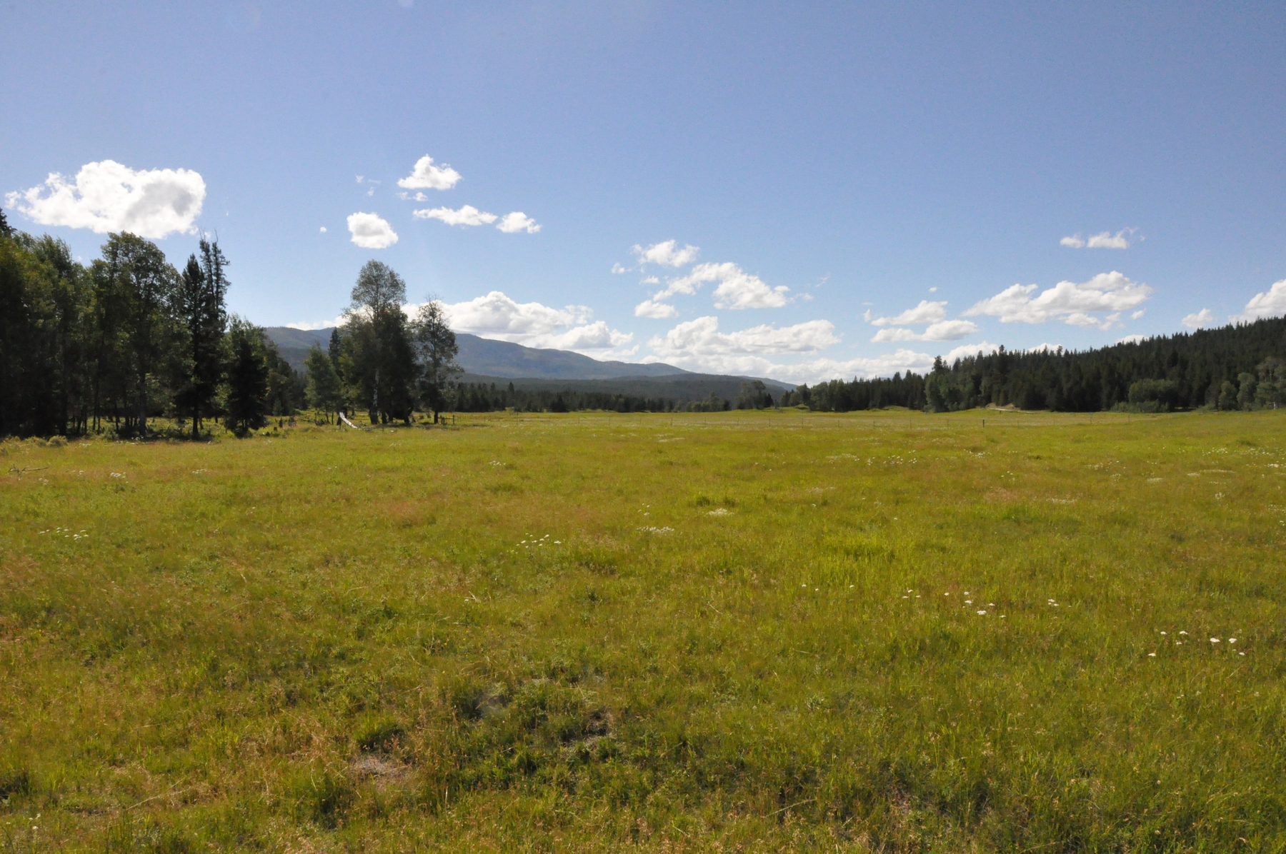 Additional photo for property listing at Nhn Lower Lost Prairie Road , Marion, MT 59925 Nhn  Lower Lost Prairie Rd Marion, Montana 59925 United States
