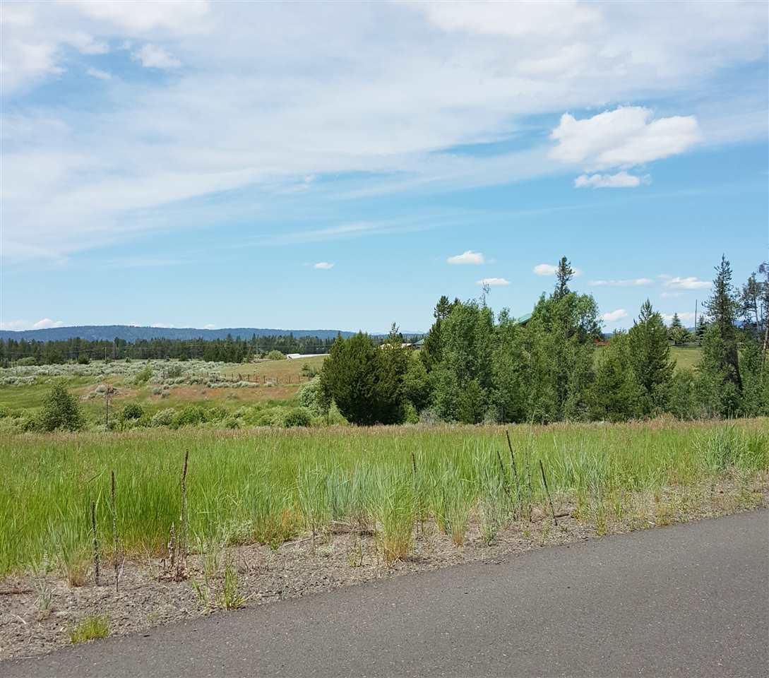 Terrain pour l Vente à XX Raptor Loop #5, Mccall McCall, Idaho, 83638 États-Unis