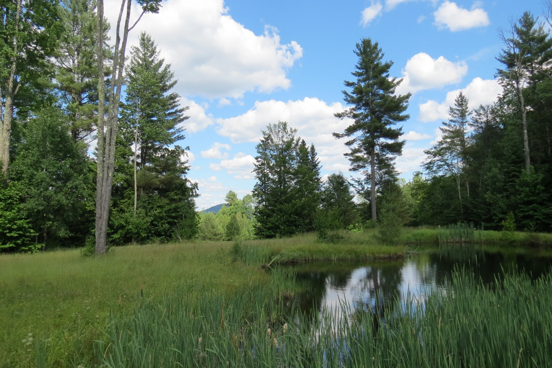 Terreno por un Venta en Serene Meadows, Mountain Views and Ponds 928 Landgrove Rd Londonderry, Vermont, 05148 Estados Unidos