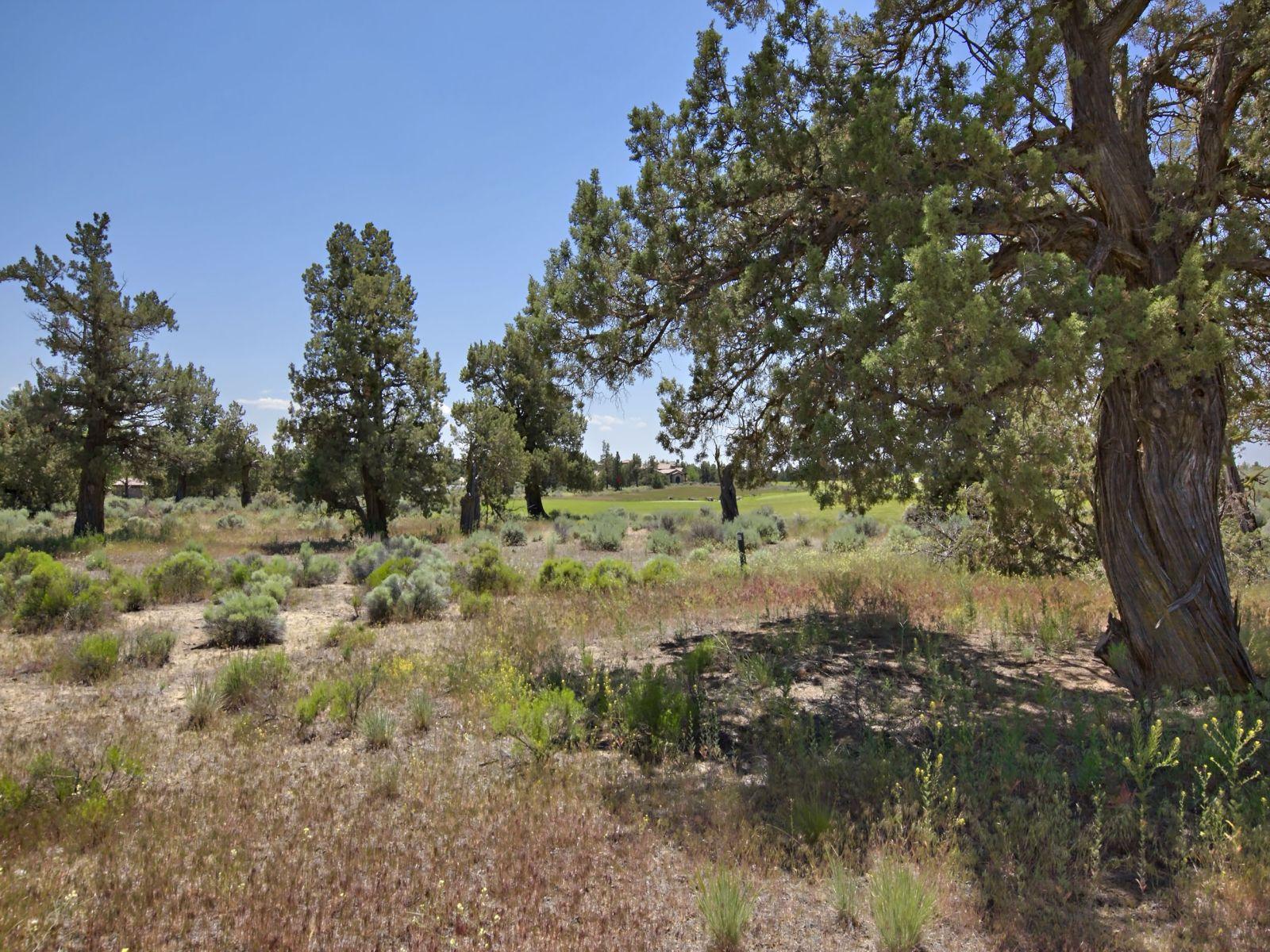 Terreno por un Venta en Pronghorn 23127 Watercourse Way Lot 51 Bend, Oregon, 97701 Estados Unidos