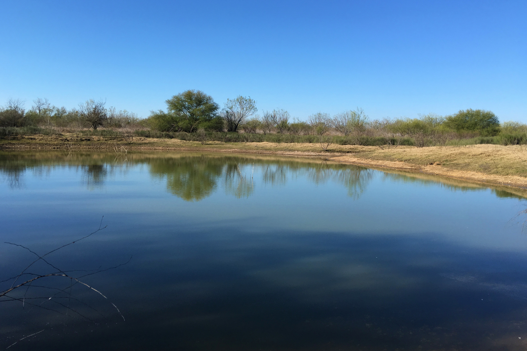 Hacienda / Granja / Rancho / Plantación por un Venta en 702± Ac. Buckhorn Creek Ranch CR 3315 702 +- Acres Pearsall, Texas 78061 Estados Unidos