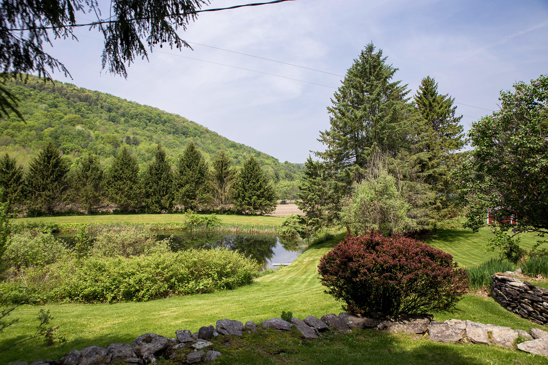 Additional photo for property listing at Butternut Farm 359a  Mckie Hollow Rd Cambridge, New York 12816 United States