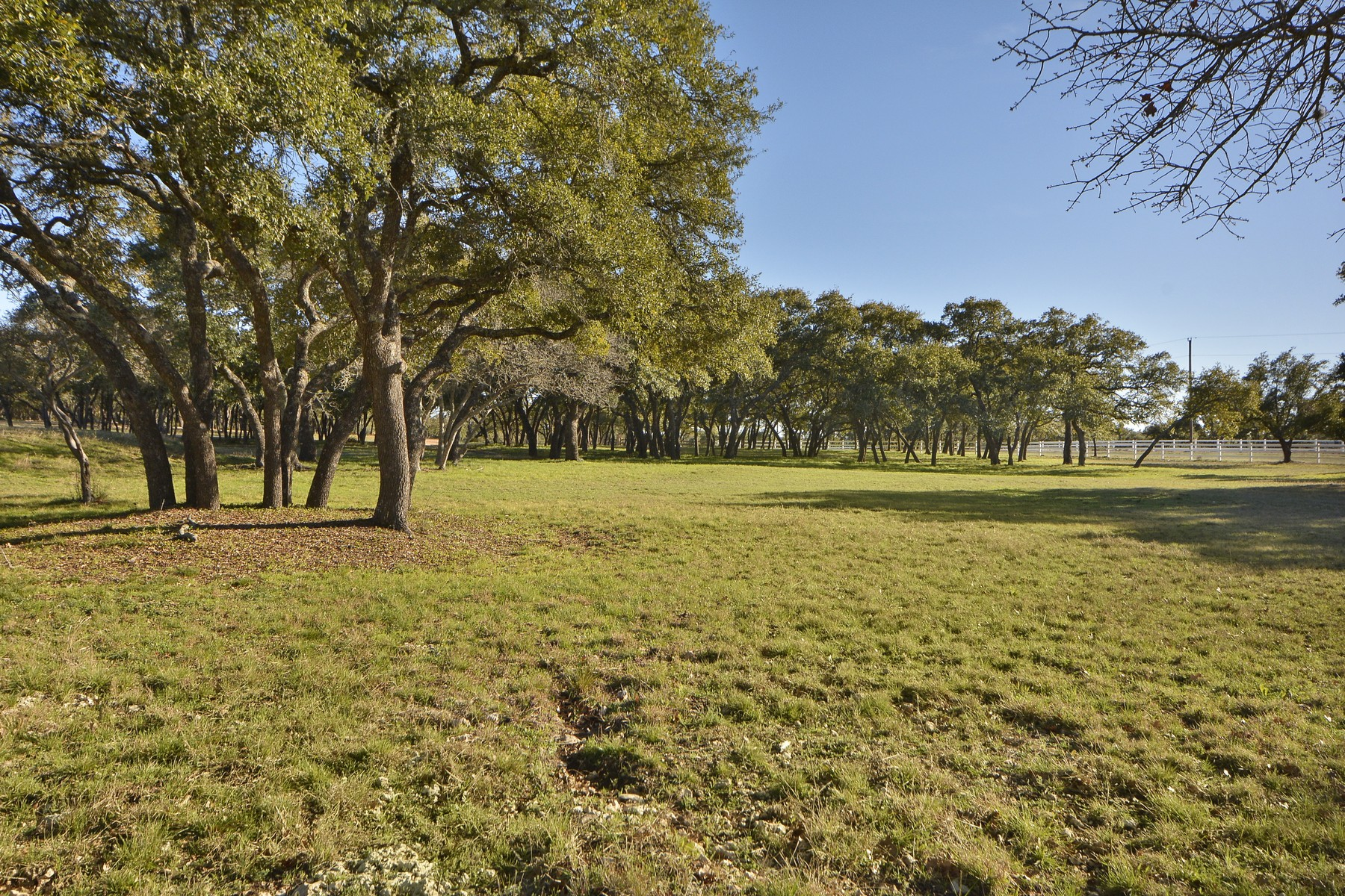 Additional photo for property listing at One-of-a-kind Gentleman's Ranch 9911 Grand Summit Blvd Dripping Springs, Texas 78620 United States