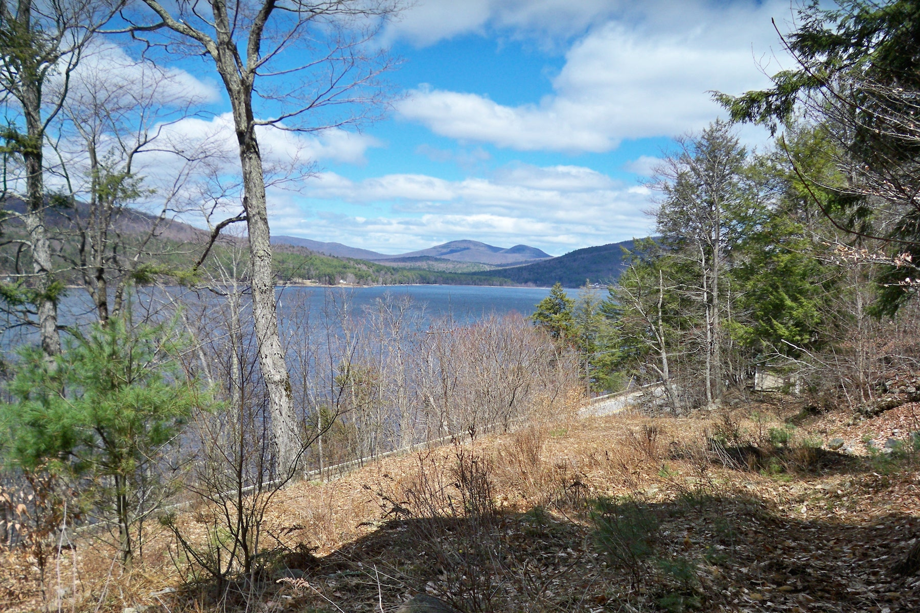 Additional photo for property listing at Prime Waterfront Building Lot 0  South Shore Rd Day, New York 12835 États-Unis
