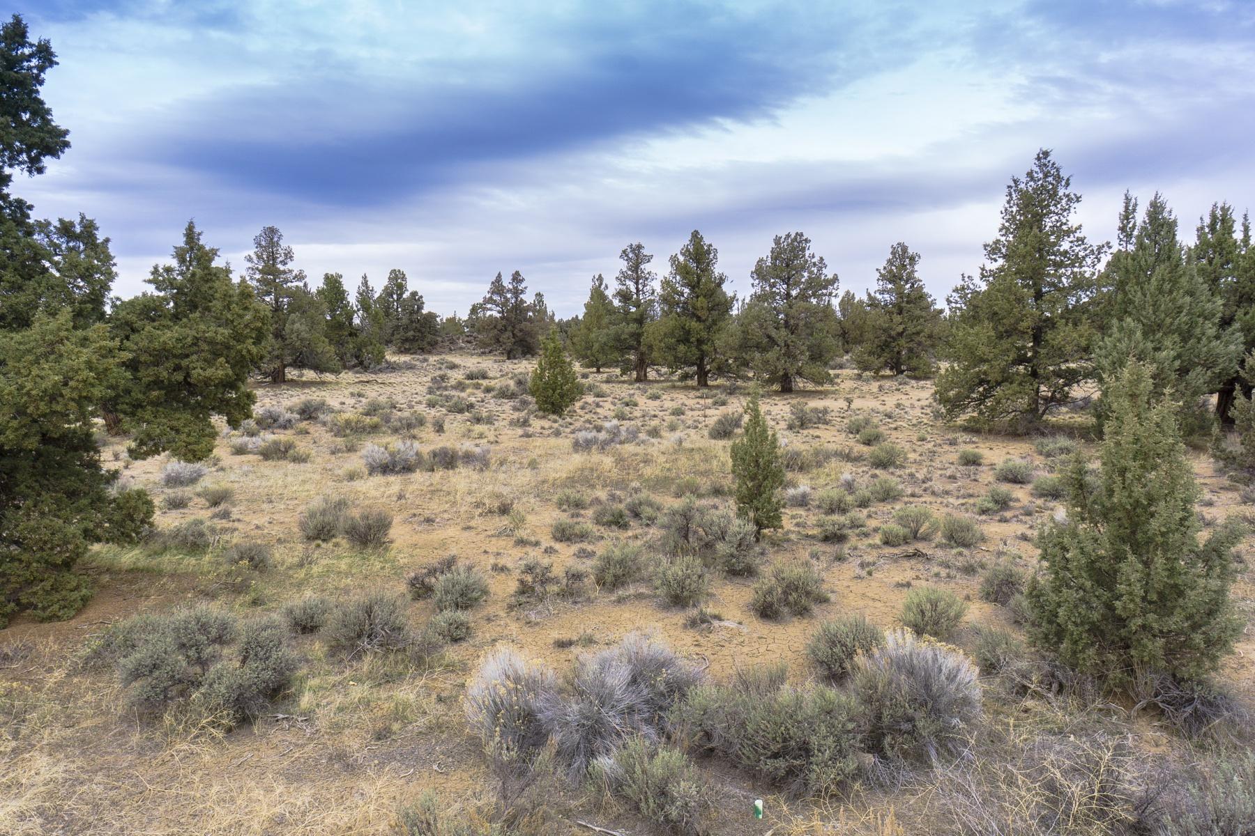 Terreno para Venda às Pronghorn Estates 23116 Switchback Ct Lot 99 Bend, Oregon, 97701 Estados Unidos