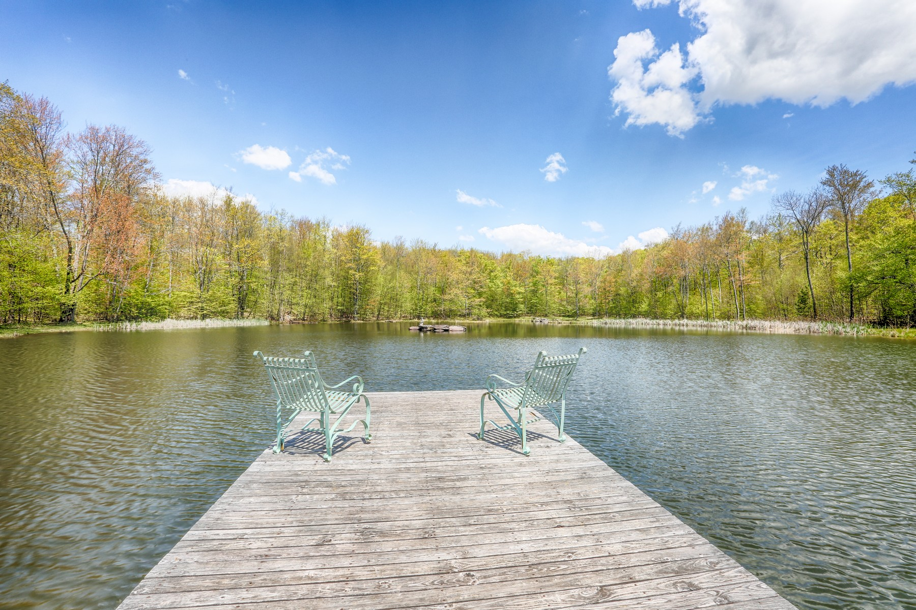 Additional photo for property listing at Secluded Gentleman's Farm 1206  Flax Island Rd Otsego, New York 13825 United States