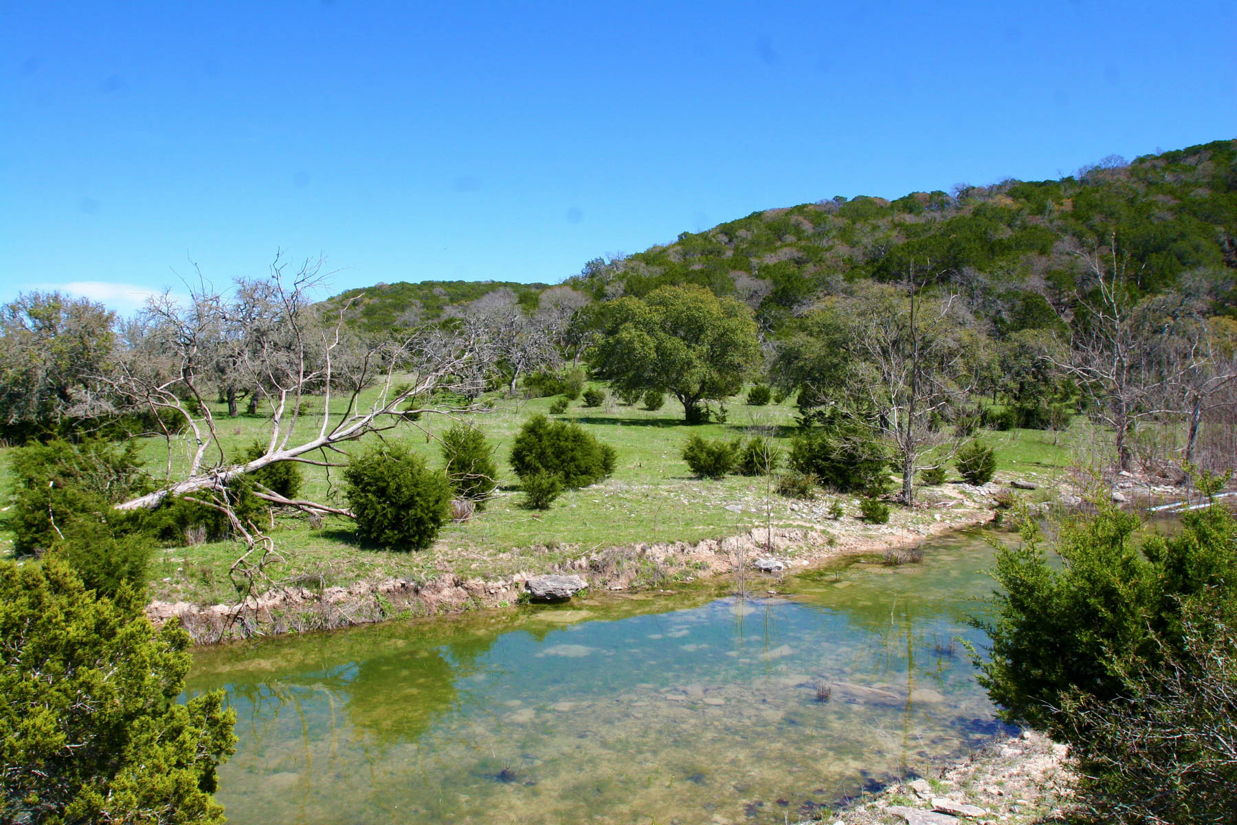 Farm / Ranch / Plantation for Sale at 700± Acres Whiskey Springs Ranch 700 +/- Acres / Hwy 16 Kerrville, Texas 78028 United States