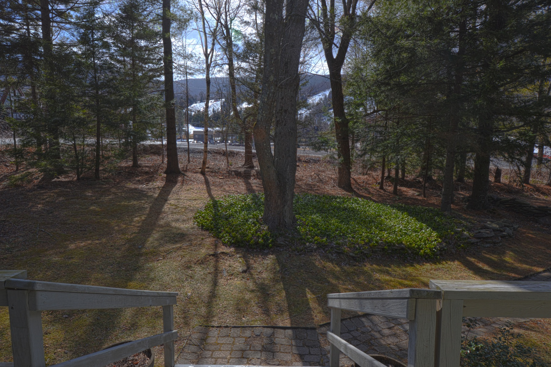 Single Family Home for Sale at 100k Rental Potential, Step onto Slopes 25 Berry Ln Hunter, New York, 12442 United States
