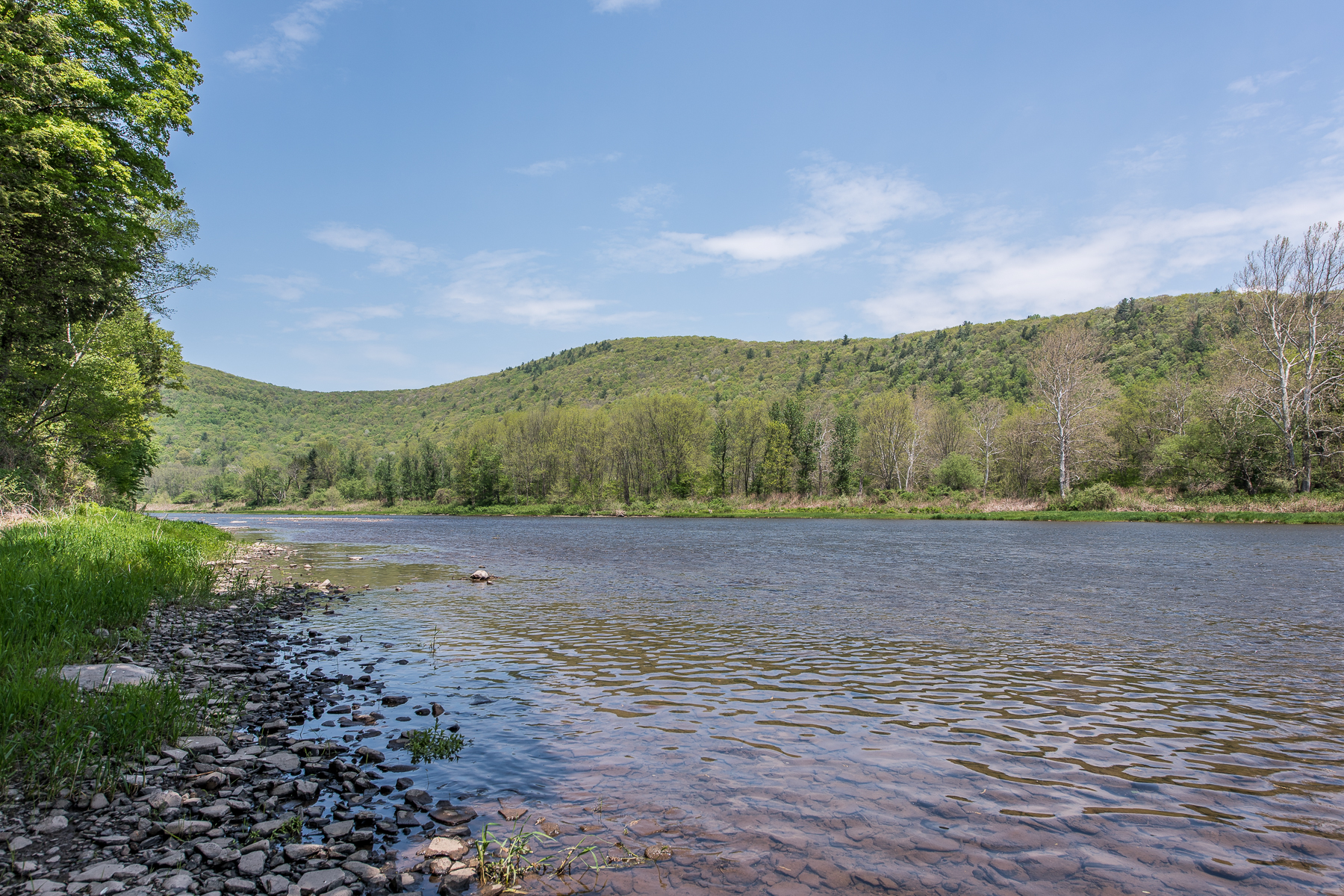 Additional photo for property listing at Delaware River Fishing Retreat 2045  Peas Eddy Rd Hancock, New York 13783 United States