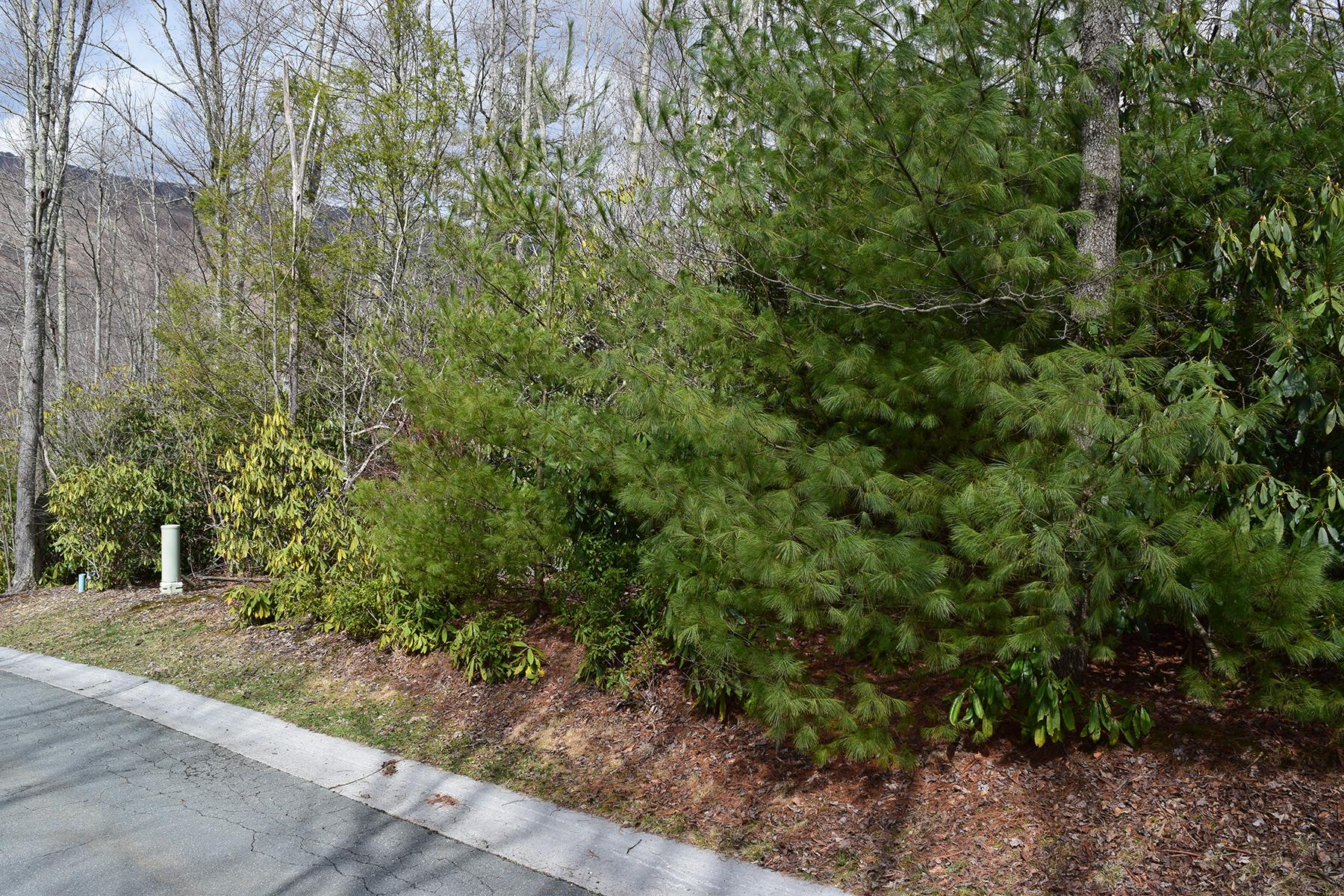 Land for Sale at BANNER ELK - CROOKED CREEK TBD Cinnamon Fern Lane Banner Elk, North Carolina, 28604 United States
