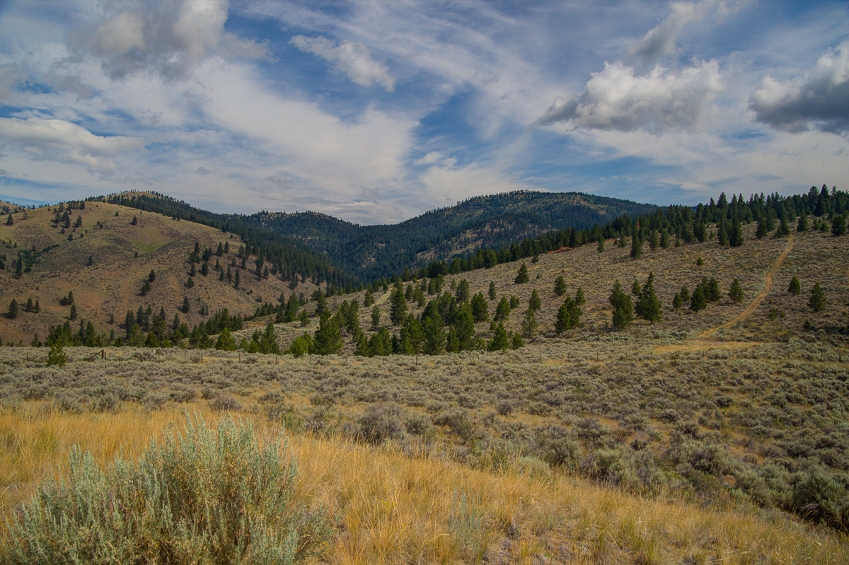 Land for Sale at Lot 1 Sapphire Ridge Ranch , Florence, MT 59833 Lot 1 Sapphire Ridge Ranch Florence, Montana 59833 United States
