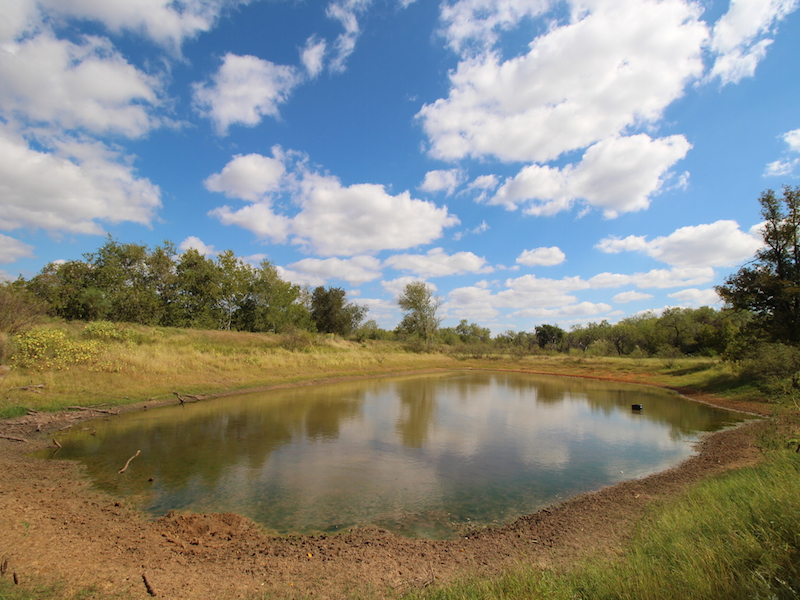 Property For Sale at 445.79+/- Acres  Atascosa-Wilson Co.