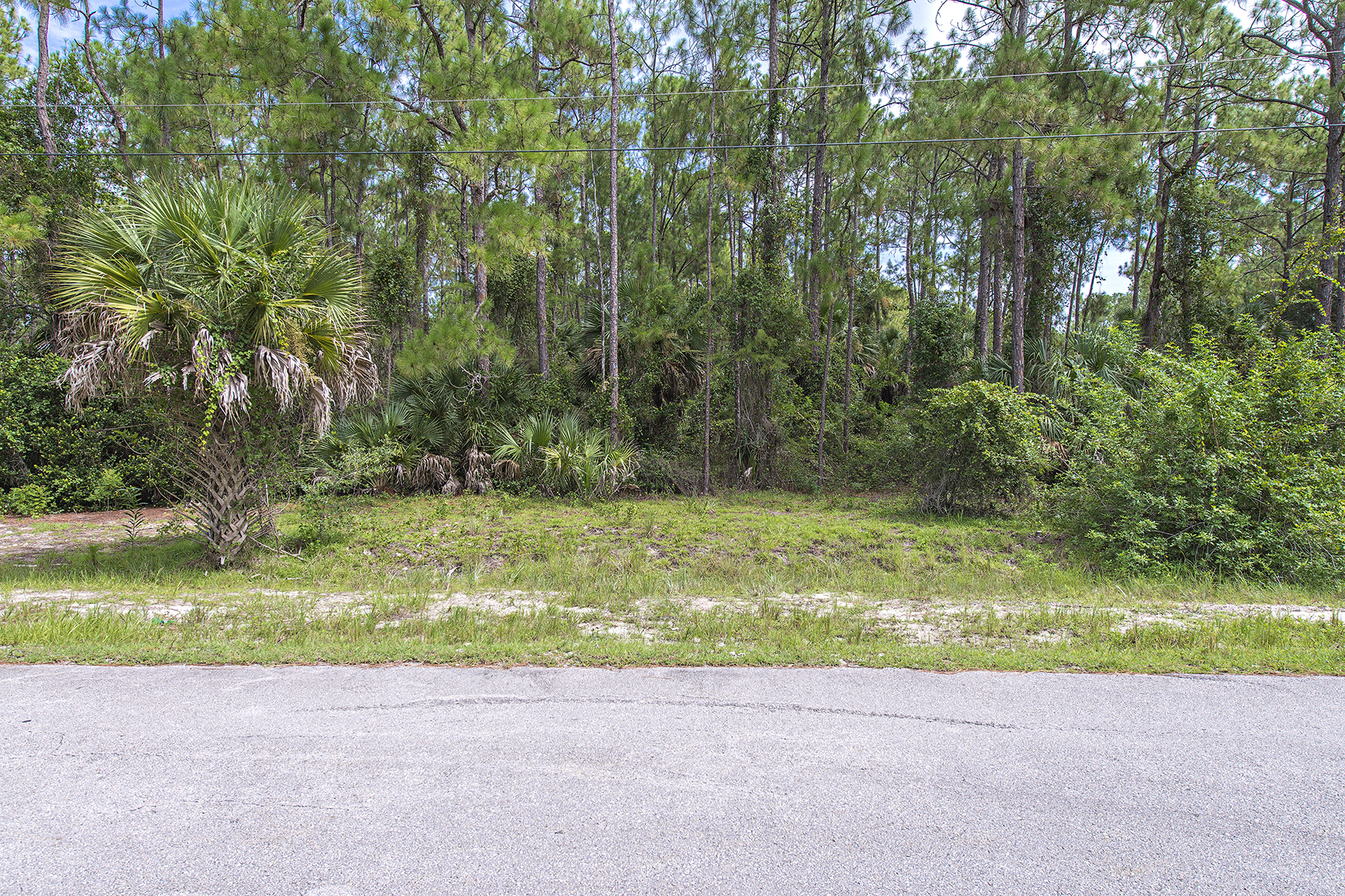 土地 为 销售 在 GOLDEN GATE ESTATES 0 11th Ave SW Naples, 佛罗里达州 34119 美国