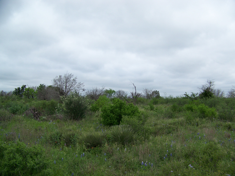 Terreno por un Venta en Gorgeous Acreage in The Hills of Horseshoe Bay 0 Lots 42 & 43 The Hills of HSB Horseshoe Bay, Texas 78257 Estados Unidos