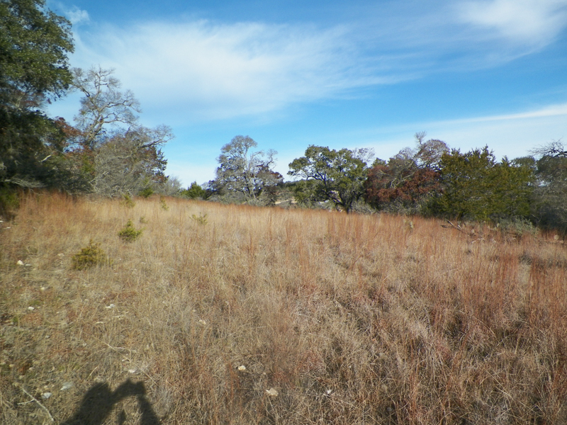 Additional photo for property listing at Exceptional Lot in Falling Water 120 N Cherry Bluff Comfort, Texas 78013 Estados Unidos