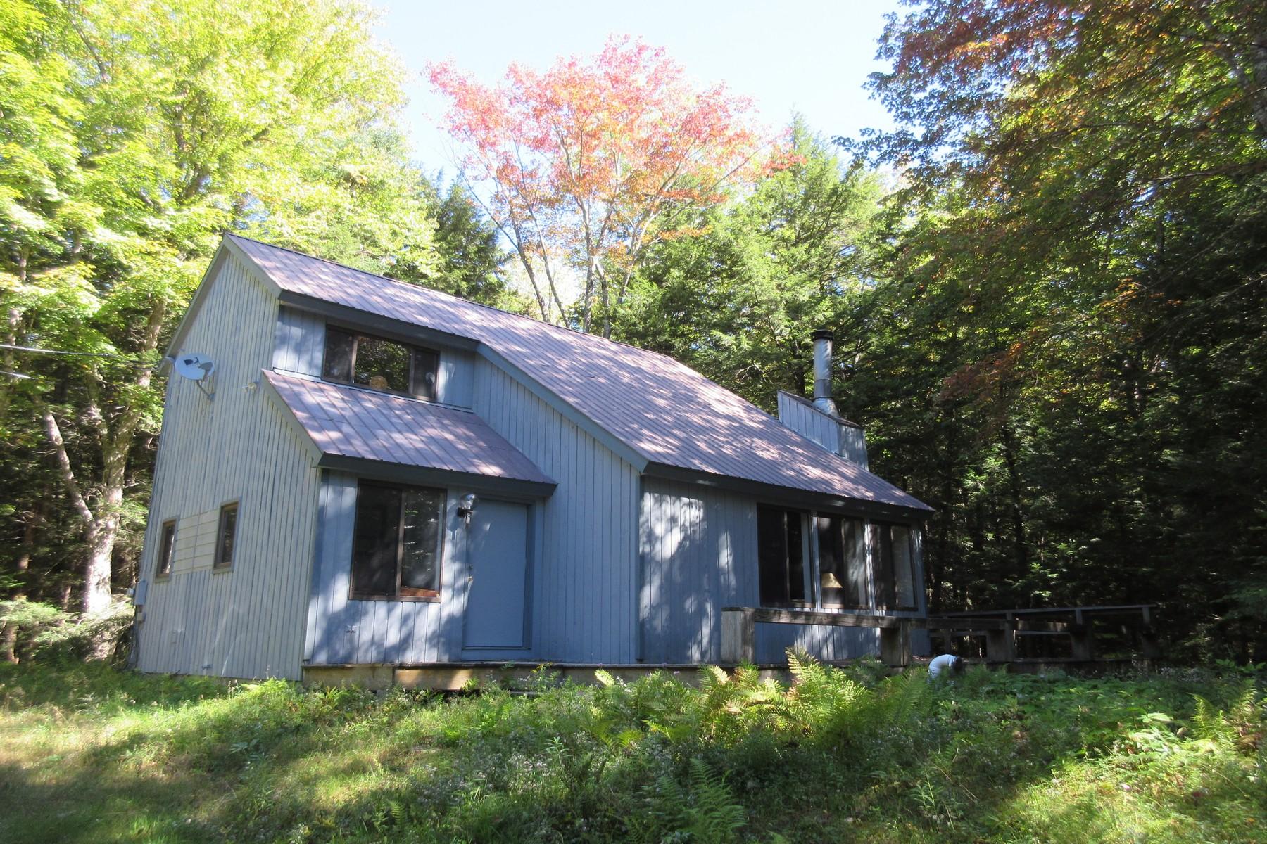 独户住宅 为 销售 在 641 Sherwood Forest, Londonderry 伦敦德里郡, 佛蒙特州, 05148 美国