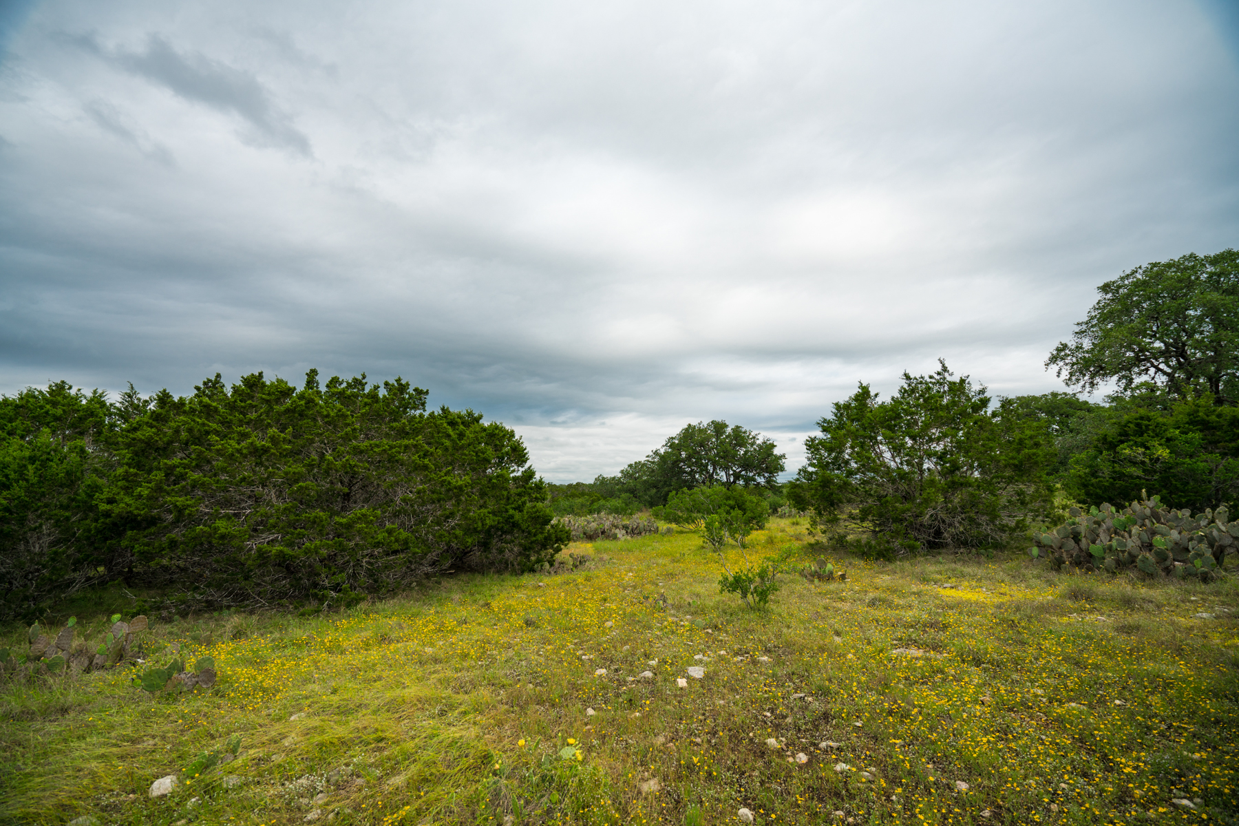 Land for Sale at Spectacular Lot in Mystic Shores 273 Broomweed Cir Spring Branch, Texas 78070 United States