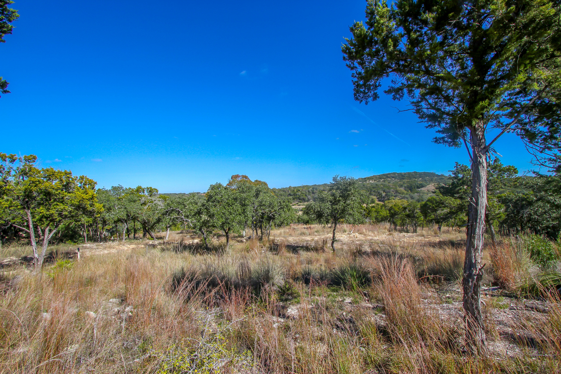 Land for Sale at Gorgeous Lot in Anaqua Springs 24923 Caliza Terr Boerne, Texas 78006 United States