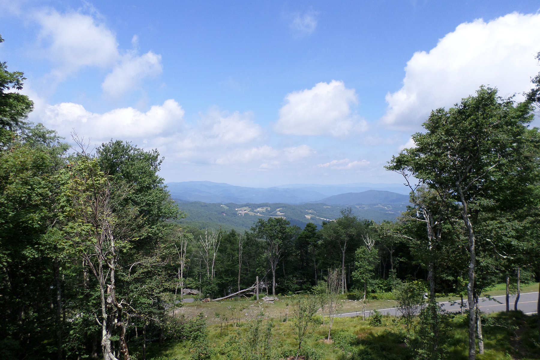 土地 为 销售 在 BEECH MOUNTAIN - FOX CREST TBD North Pinnacle Ridge Road Beech Mountain, 北卡罗来纳州, 28604 美国