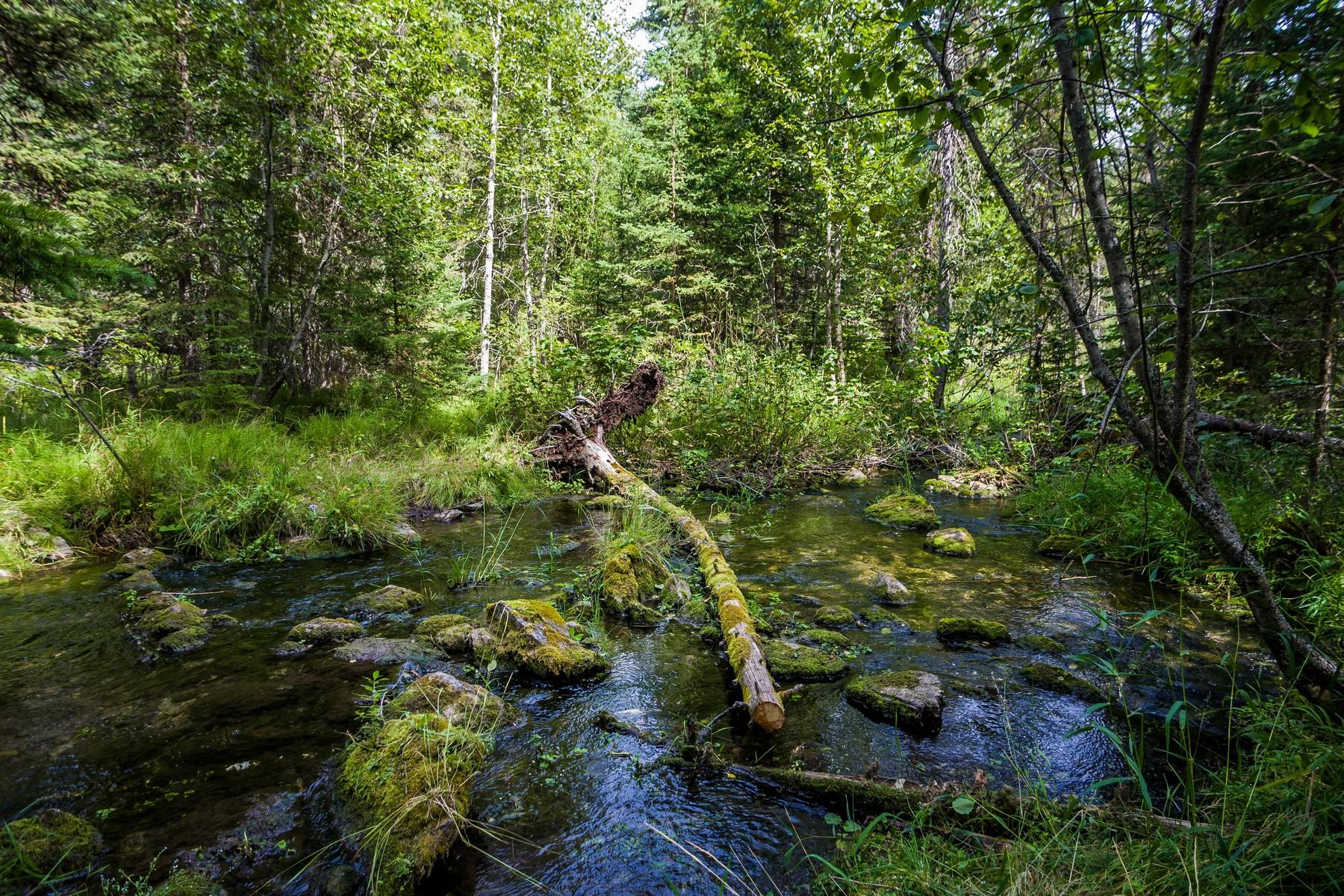 Terreno por un Venta en 974 Rhodes, Kalispell, MT 59901 974 Rhodes Kalispell, Montana, 59901 Estados Unidos
