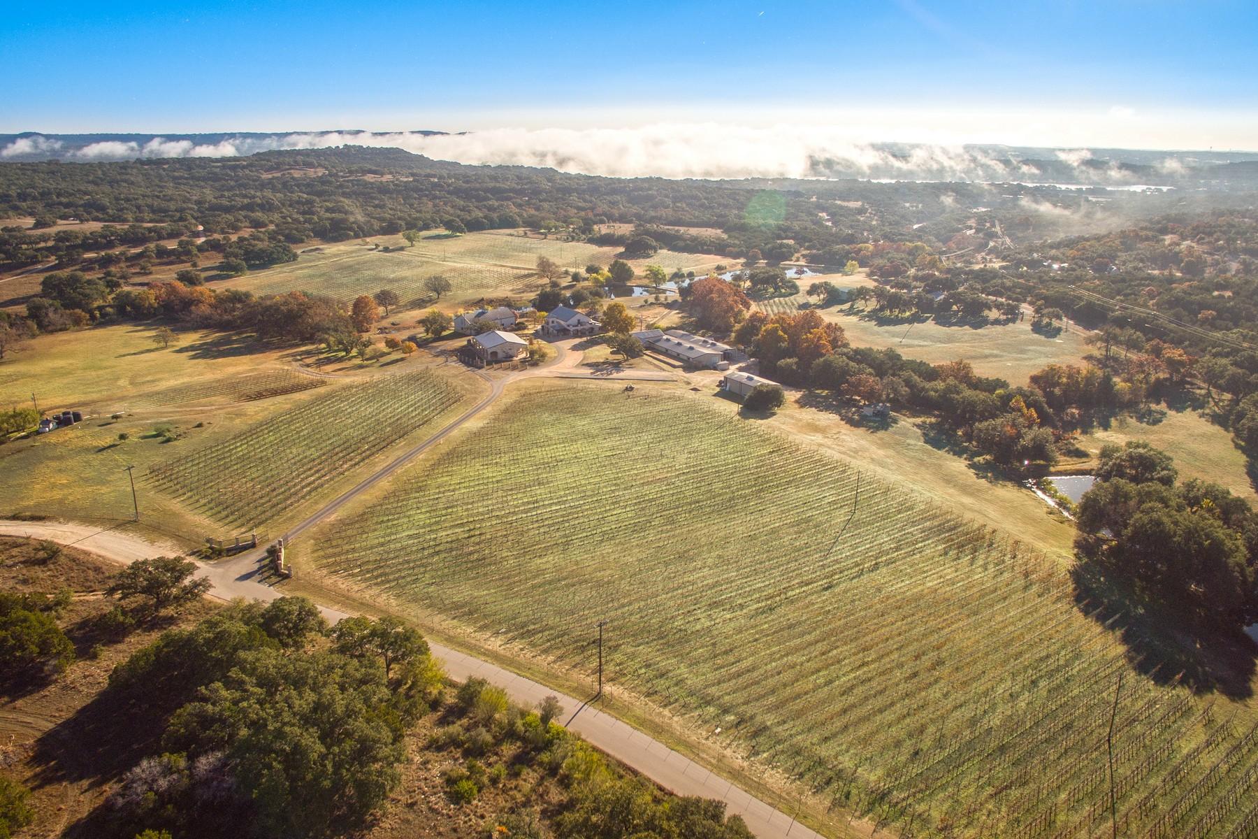 葡萄酒酿造园 为 销售 在 The Crown Jewel of Texas Wineries 24912 Singleton Bend East Rd 马布尔瀑布, 得克萨斯州, 78654 美国